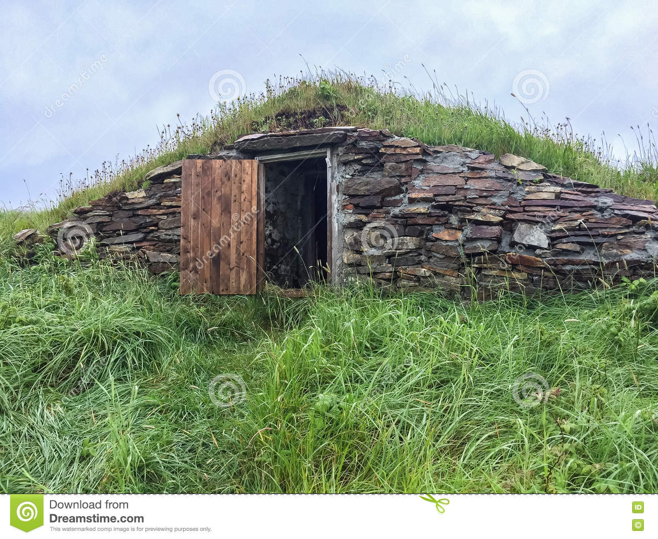 "Poetry anyalsis of the ""Root Cellar"" Essay"