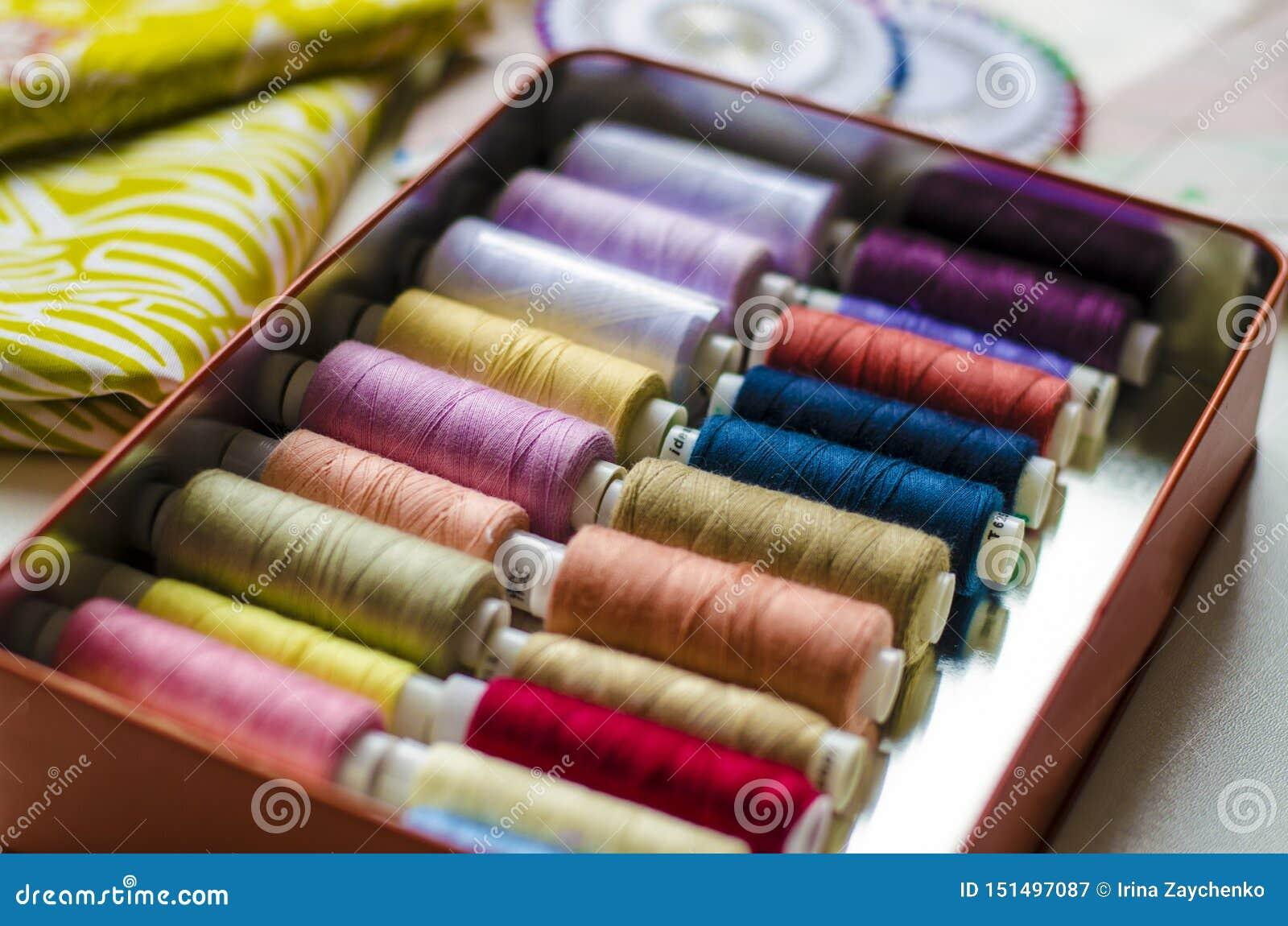Ropa de costura de la preparaci?n del modelo del vestido, sector de la materia textil