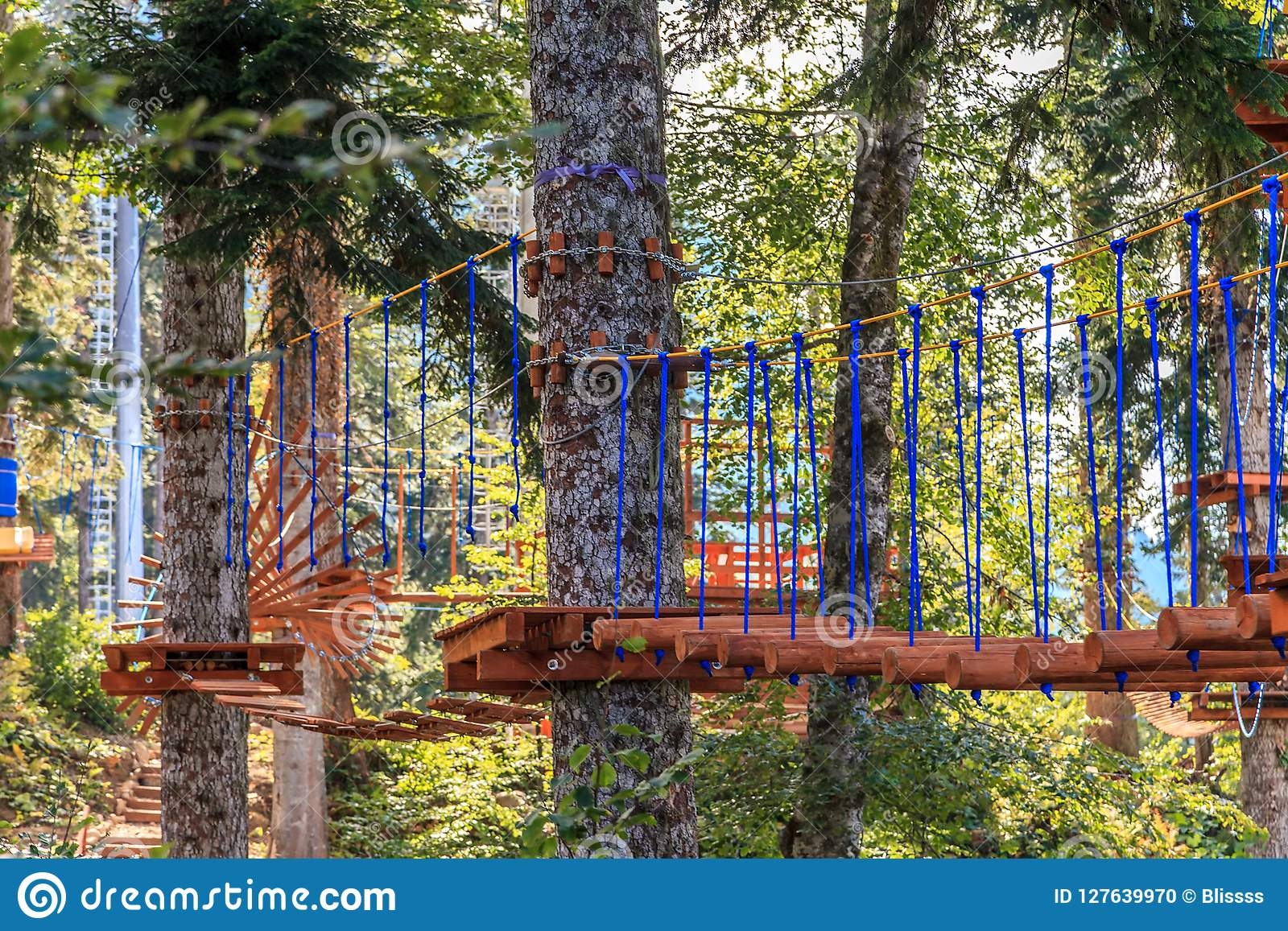 Rope Adventure Park In Fire Tree Forest Scenic View Summer Outdoor Sports And Leisure Activities Stock Photo Image Of Danger Autumn 127639970