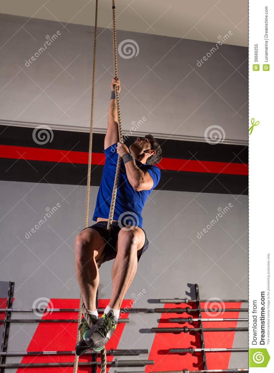 rope climb exercise man workout at gym stock image image of