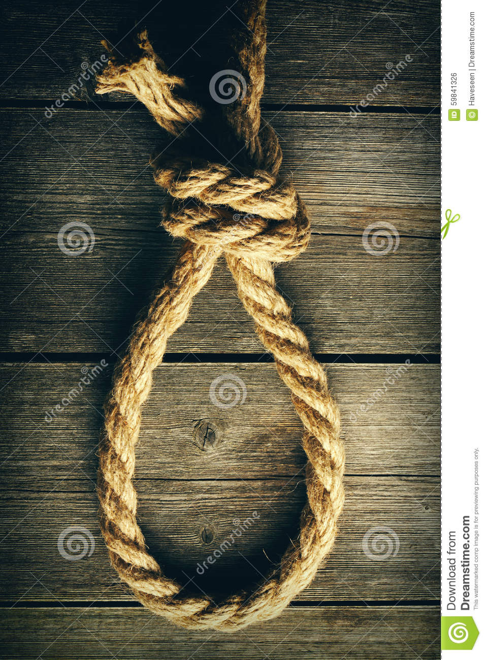 Rope Noose With Knot Stock Photo Image Of Pattern Brown 59841326
