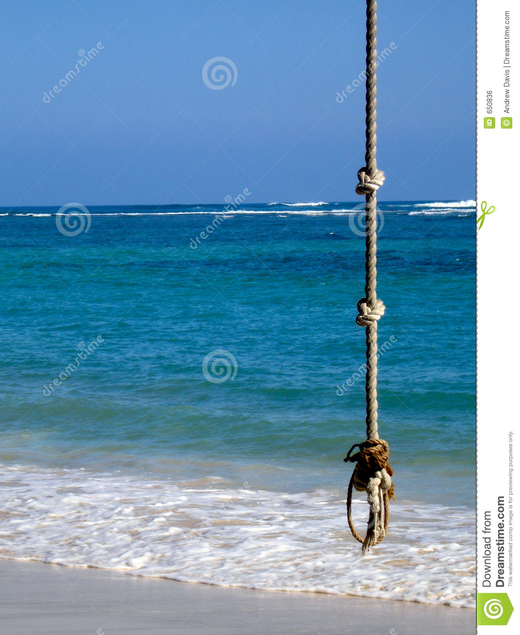Rope swing royalty free stock image image 650836 for Rope swing plans