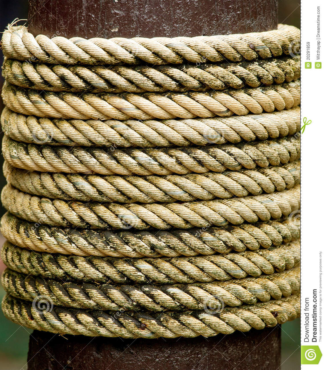 Rope Tied Stock Image Image Of Frame Cord Rough