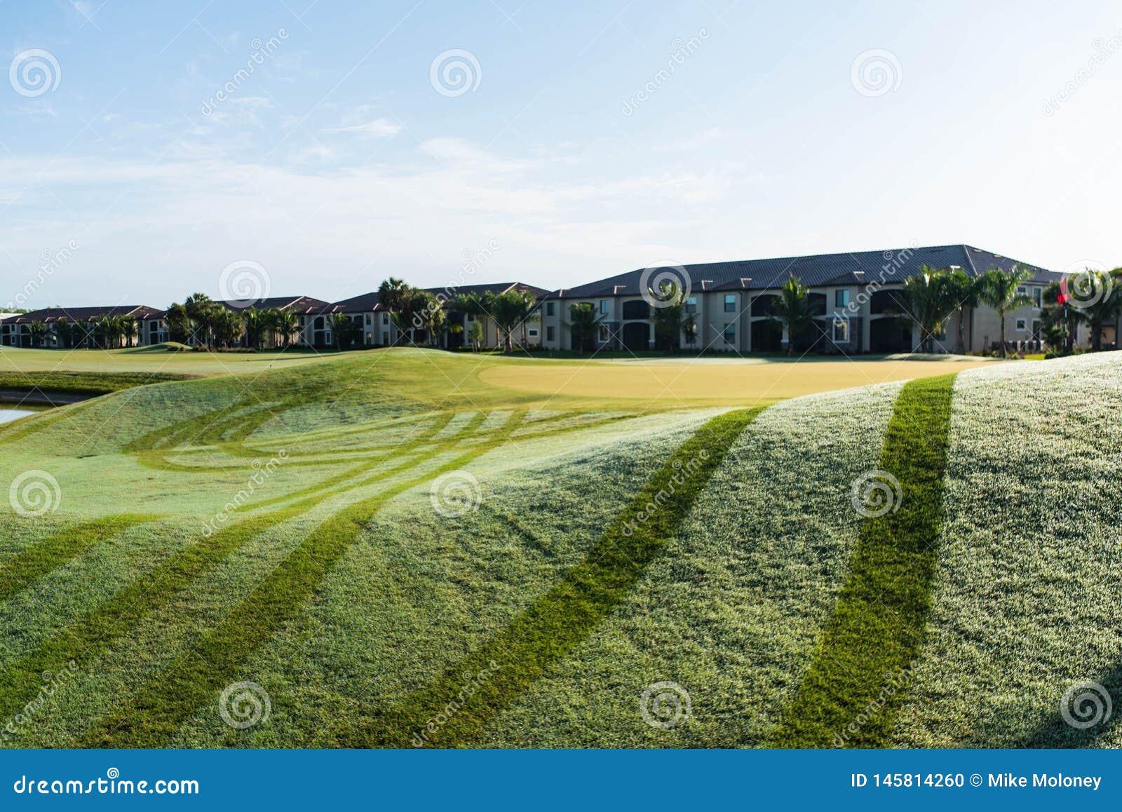 Rosée fraîche de matin sur le terrain de golf
