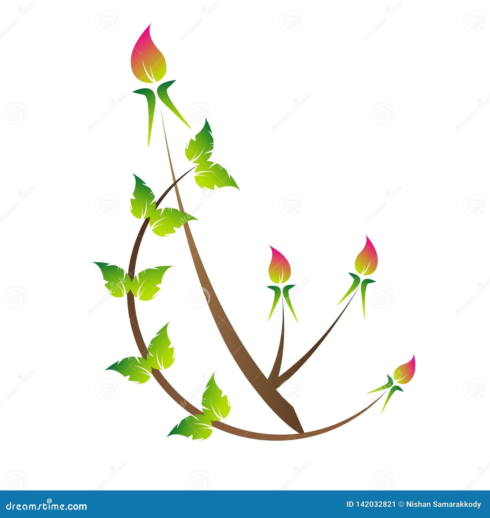 Ros bud. green leaves. beautifull ros bud