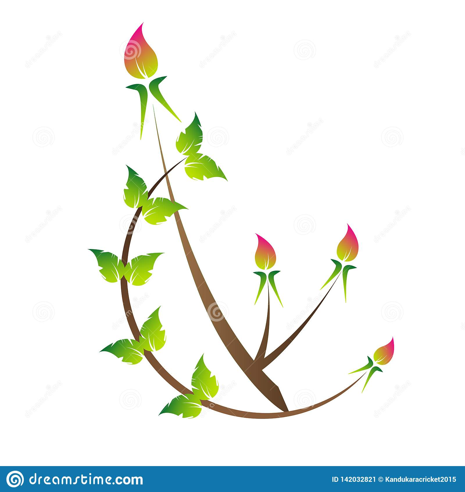 Ros-knopp green leaves härlig ros-knopp