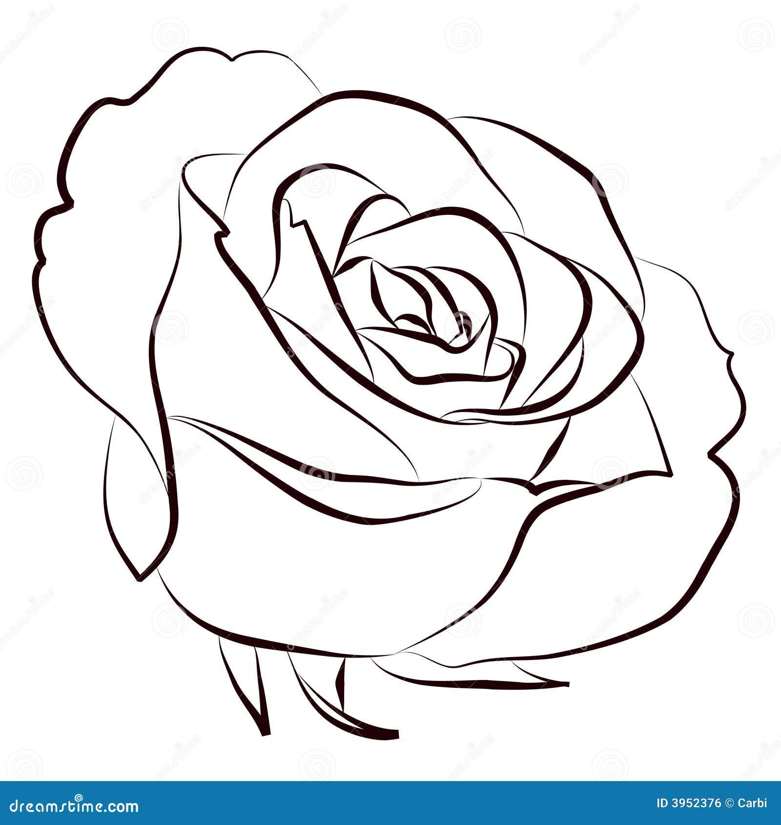 rosa illustrazione vettoriale illustrazione di scheda