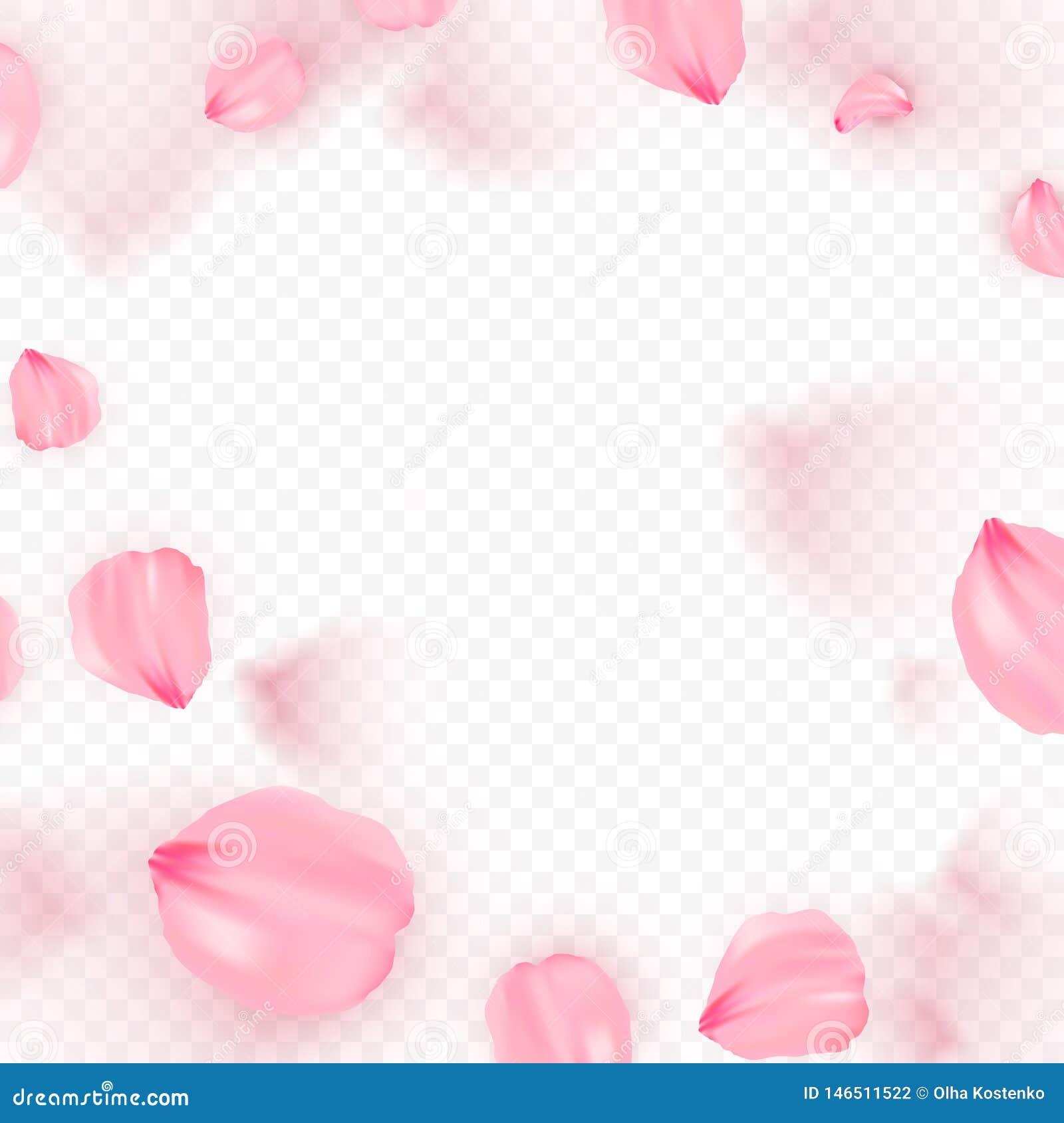 Rosa bakgrund f?r sakura fallande kronbladvektor