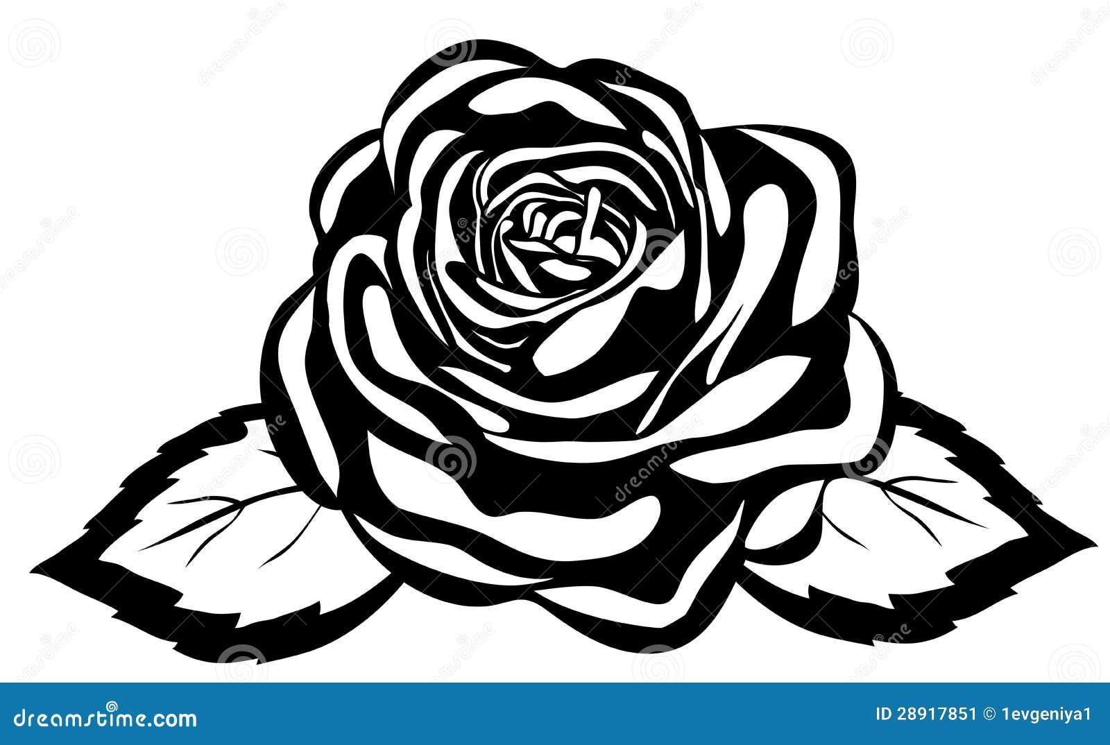 Rosa Blanco Y Negro Abstracta Primer Aislado Ilustración Del Vector