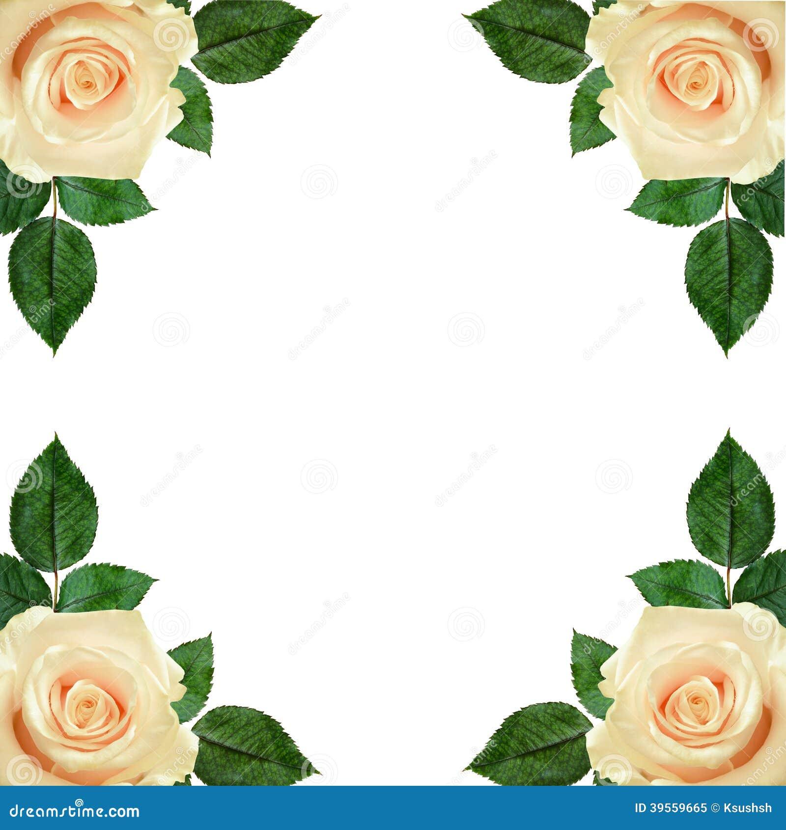 Rosa blommaordning