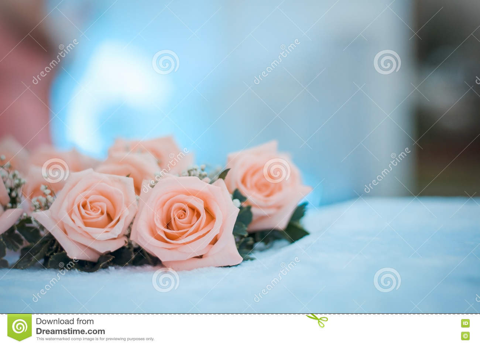 Rosa colocou na mesa