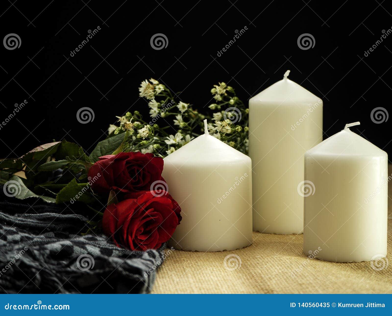 Rosa com os ornamento do dia de Valentim das velas
