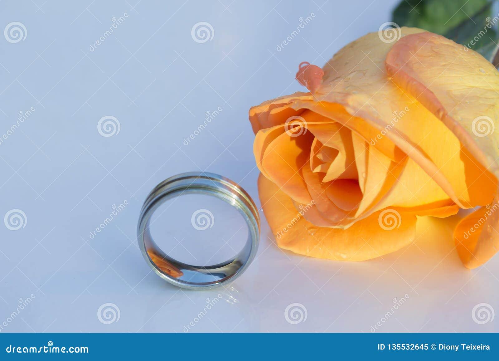 Rosa cromada y anaranjada del anillo de bodas, debajo de dramático ligero, en el fondo blanco