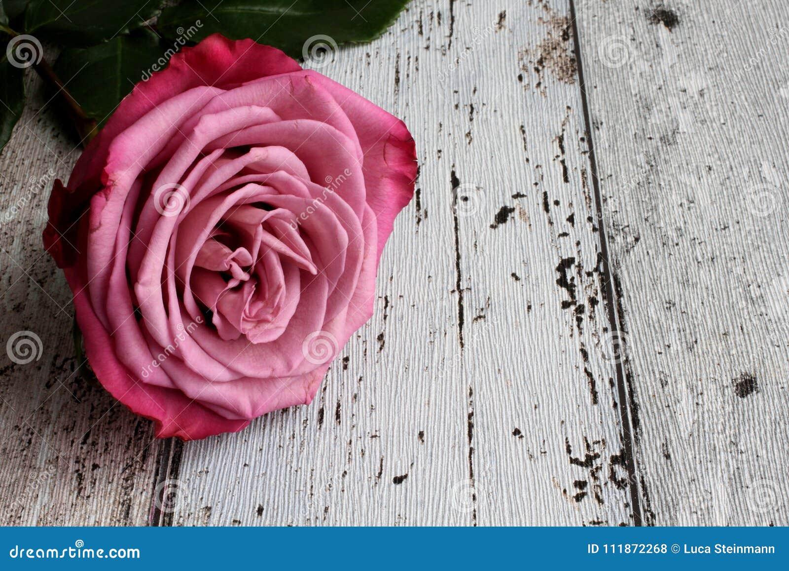 Rosa del rosa con las hojas en fondo de madera