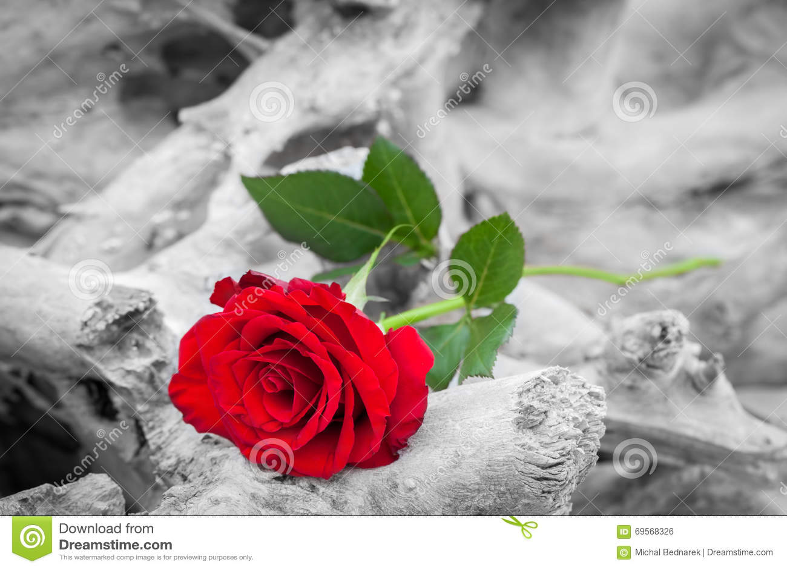 Increíble Diseños De Uñas De Color Rojo Blanco Y Negro Cresta ...