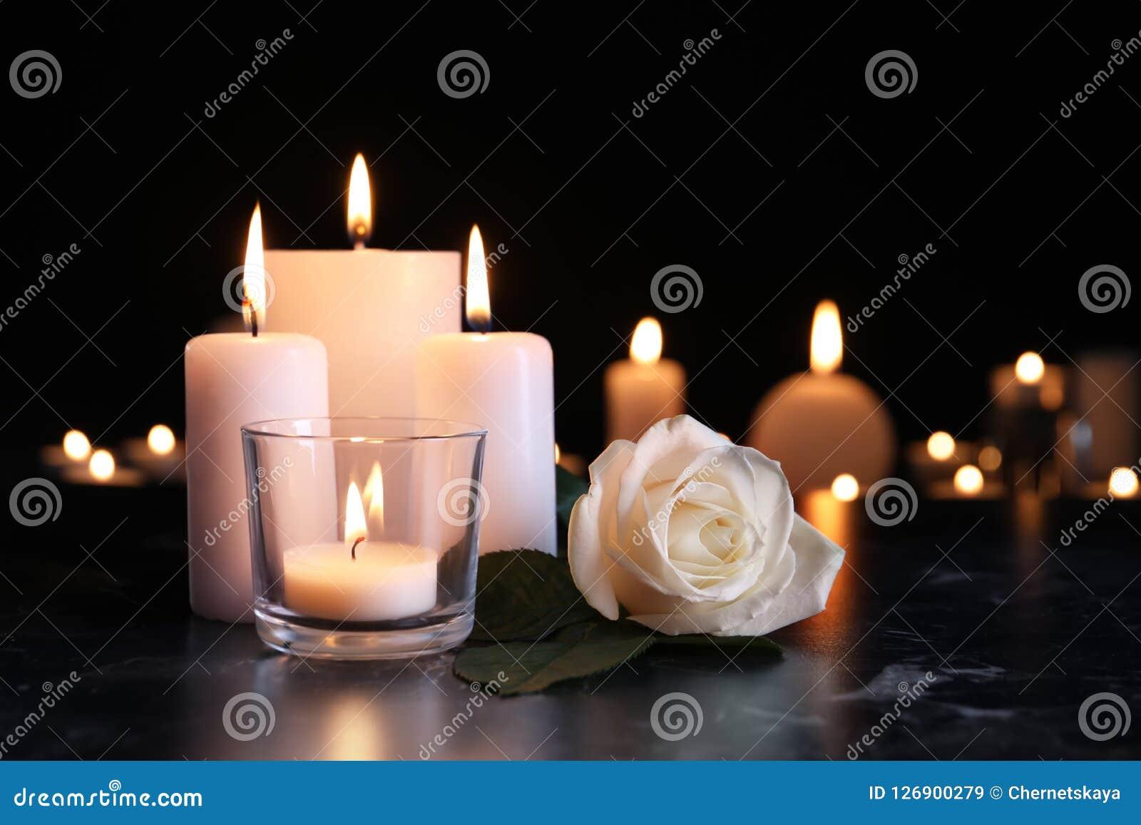Rosa do branco e velas ardentes na tabela na escuridão