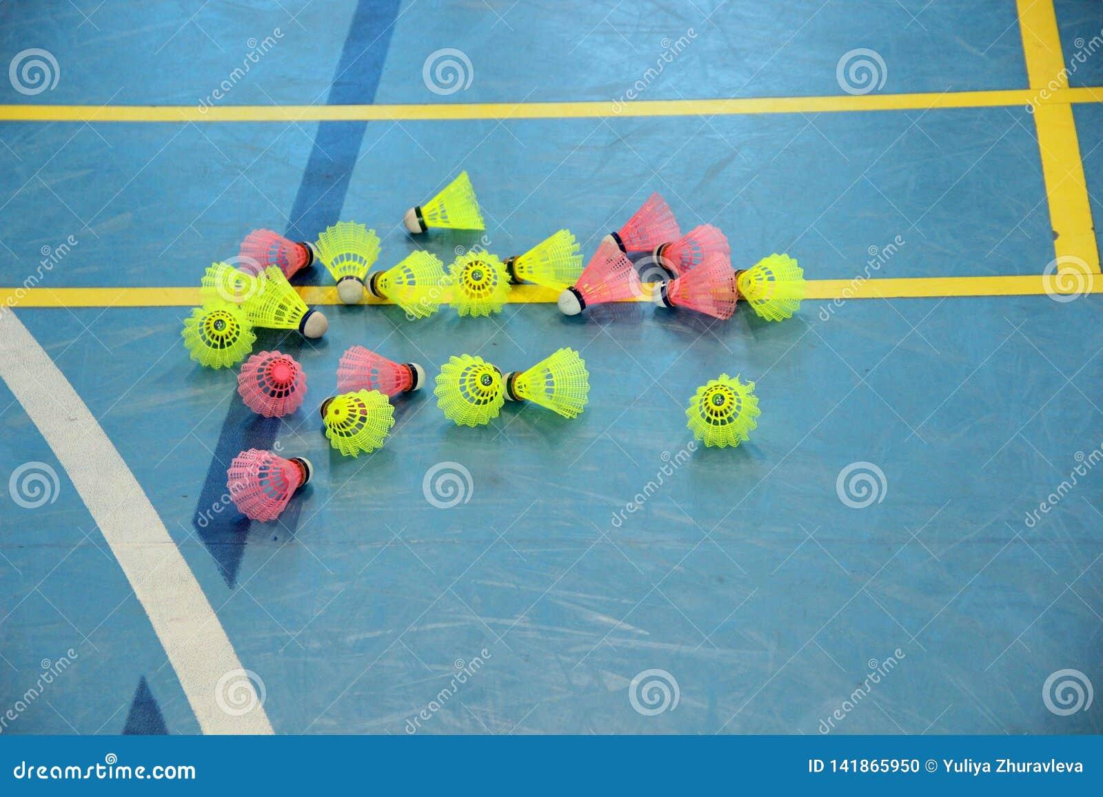 Rosa do lote e petecas amarelas na borda da corte de badminton