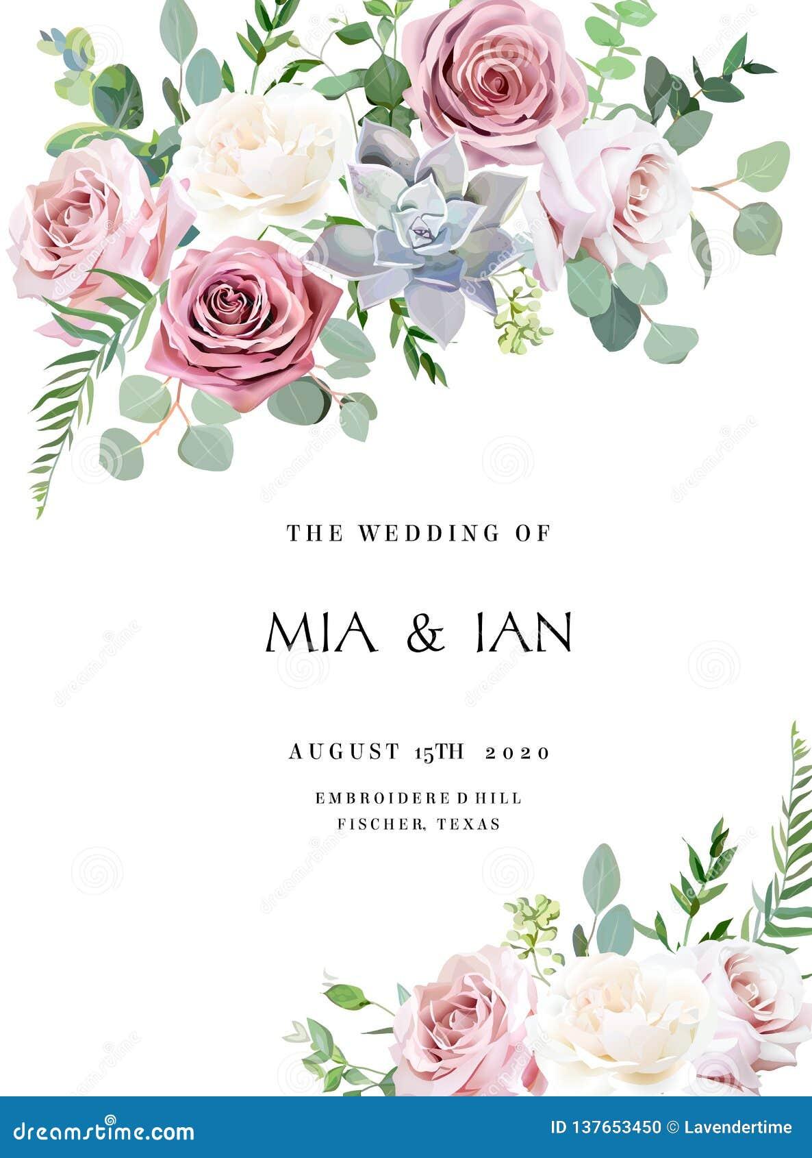 Rosa empoeirado, rosa antiga branco-amarelada, quadro pálido do casamento do projeto do vetor das flores
