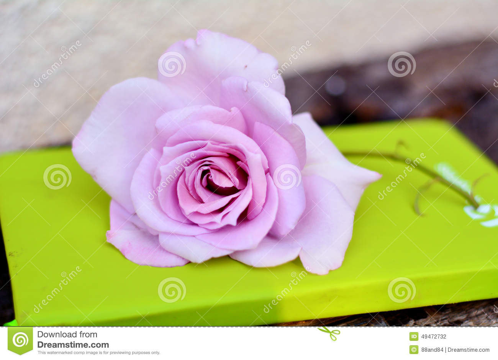 Rosa färgros på en grön anteckningsbok