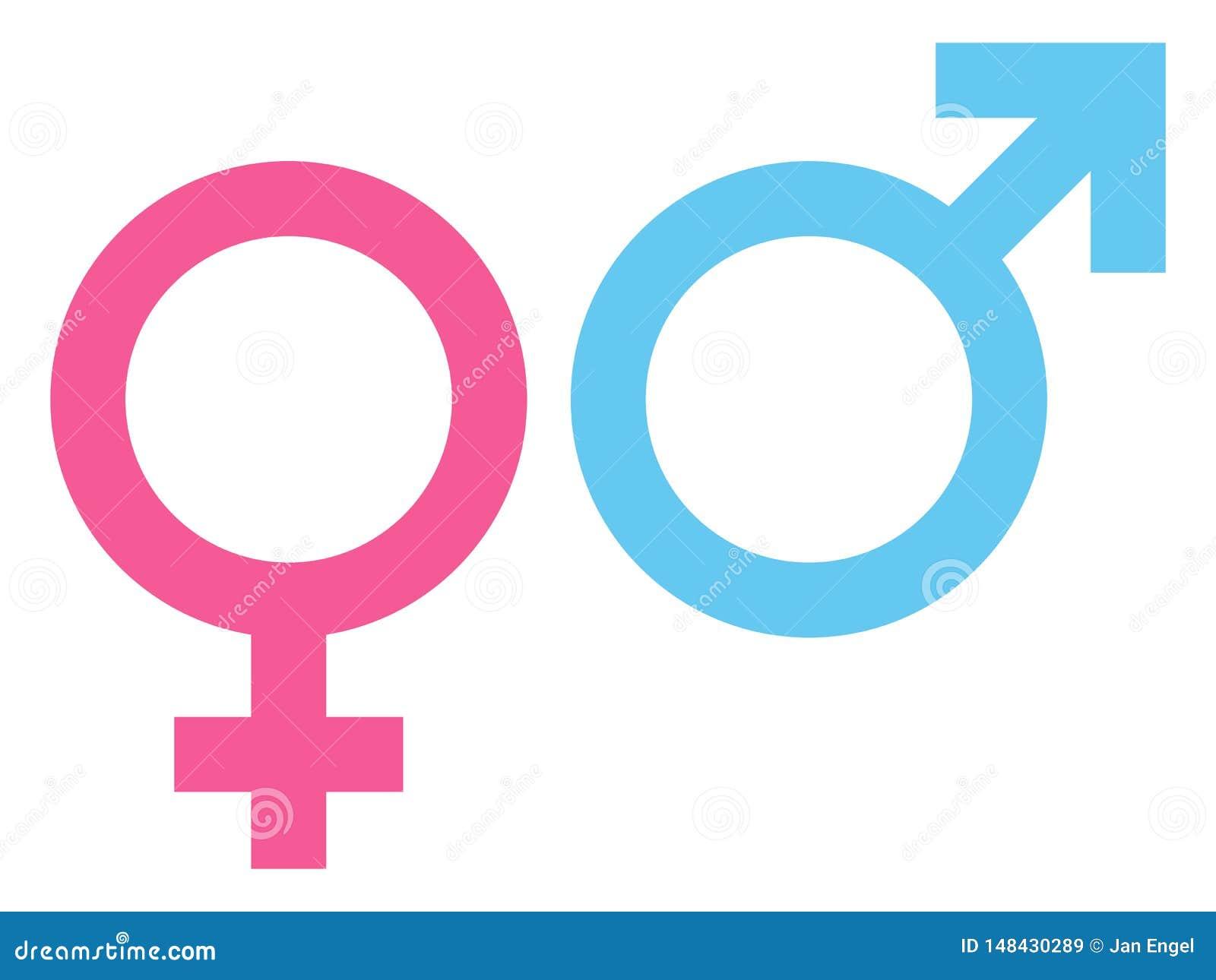 Rosa fêmea e masculino do ícone e azul