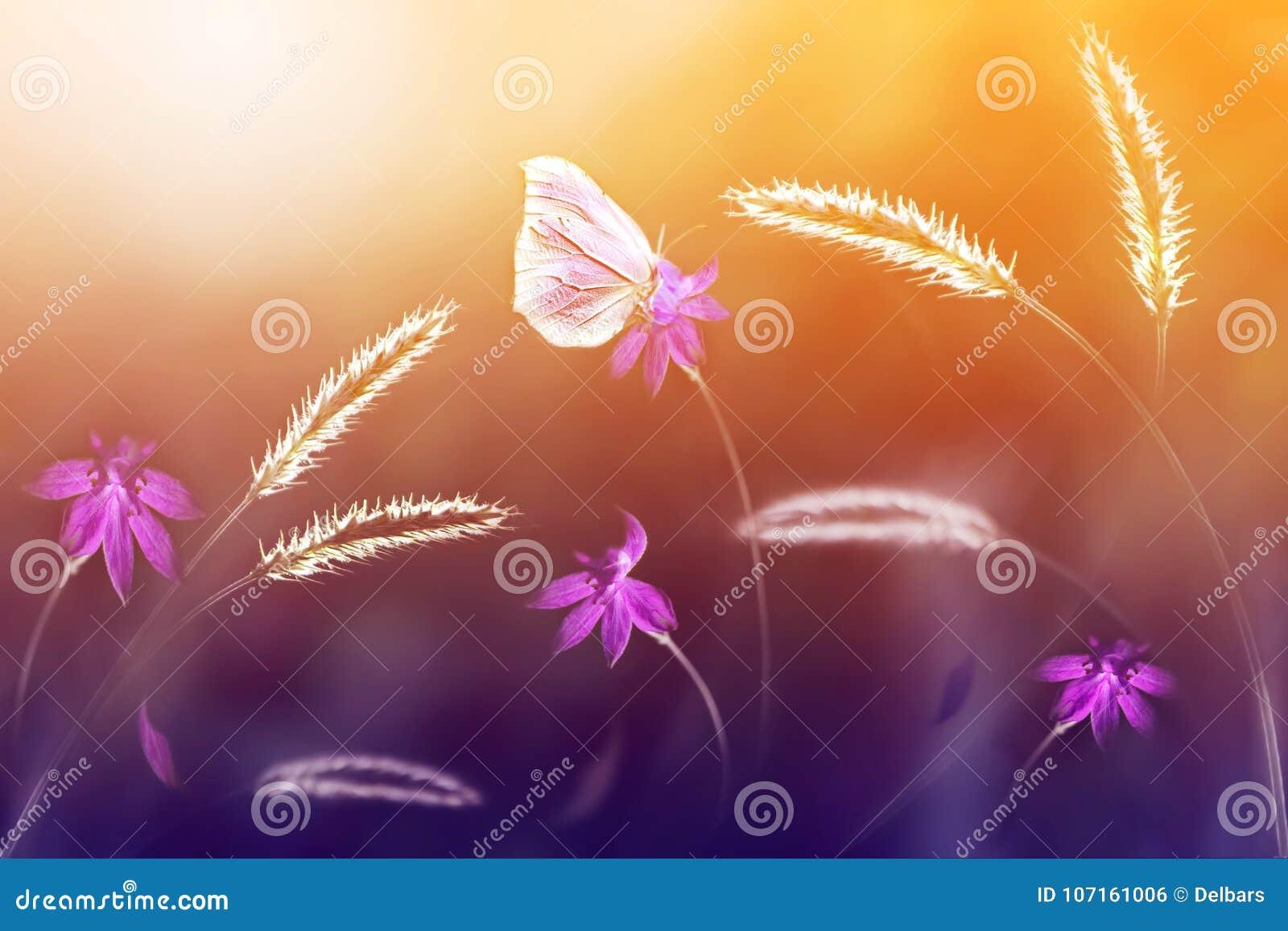 Rosa fjäril mot en bakgrund av lösa blommor i lila- och gulingsignaler Konstnärlig bild slapp fokus