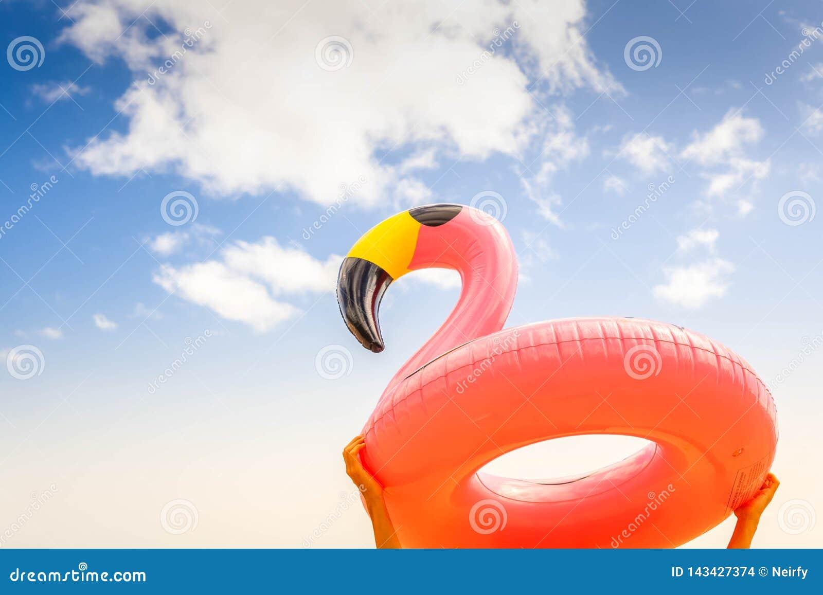 Rosa Flamingo auf Strand