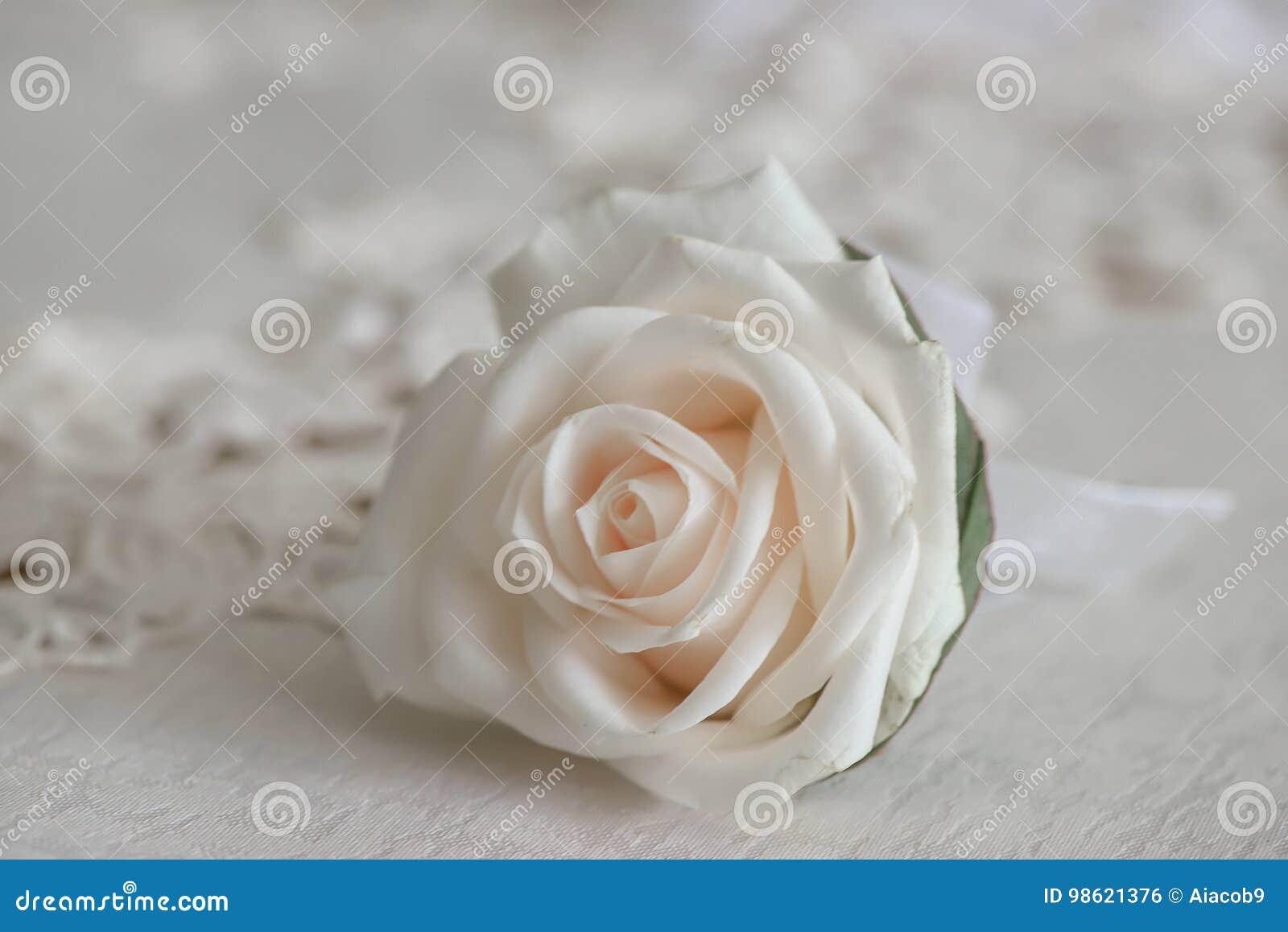Rosa Fresca Del Blanco Pequeño Ramo Para El Ojal Del Traje