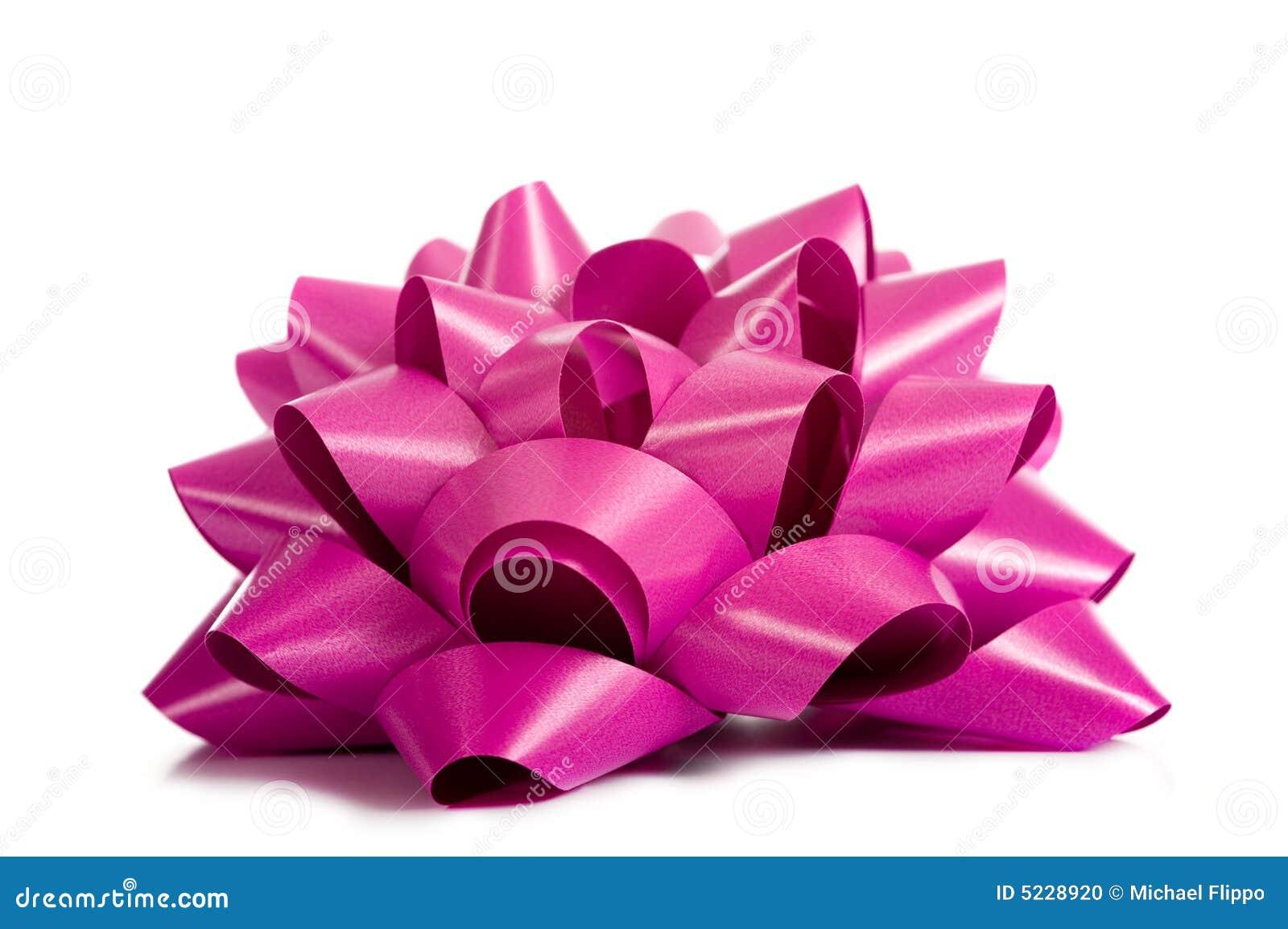 Rosa purpur bandwhite
