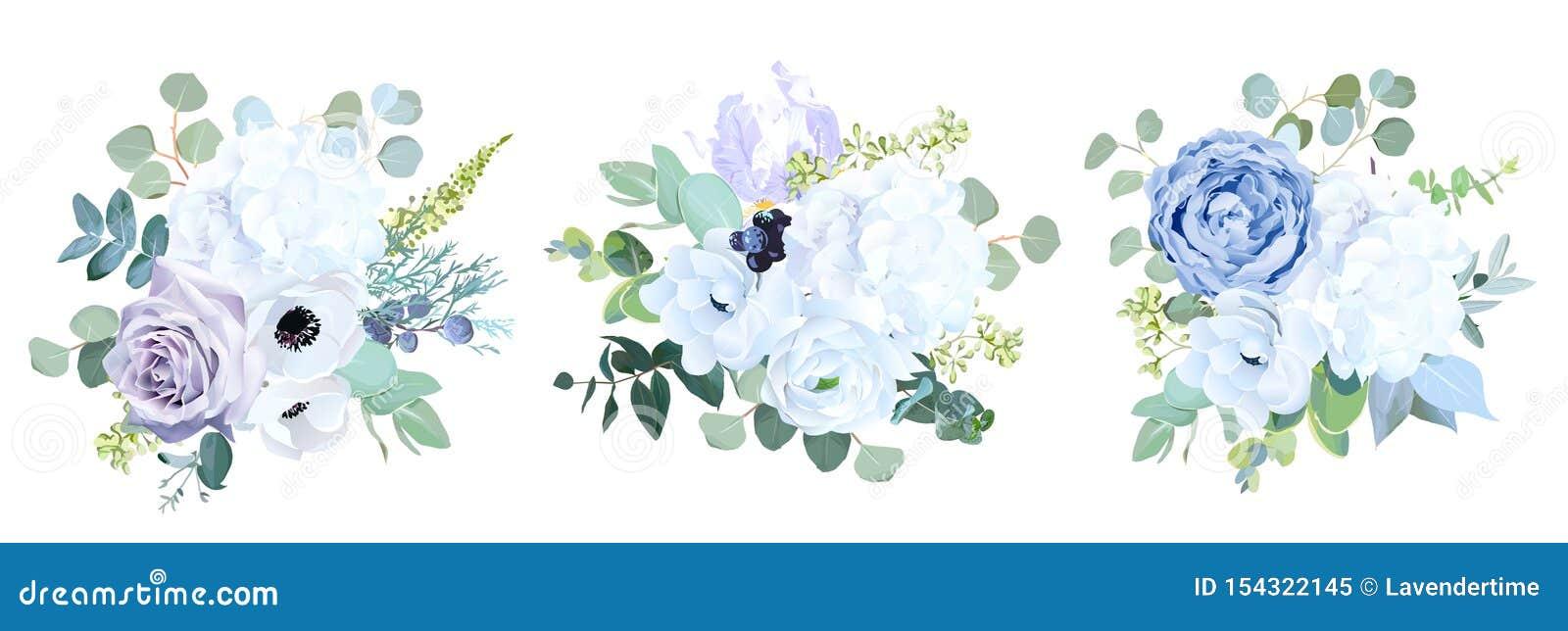 Rosa Roxa Azul Palida Empoeirada Hortensia Branca Ranunculo Iris Flor Da Anemona Ilustracao Do Vetor Ilustracao De Palida Empoeirada 154322145