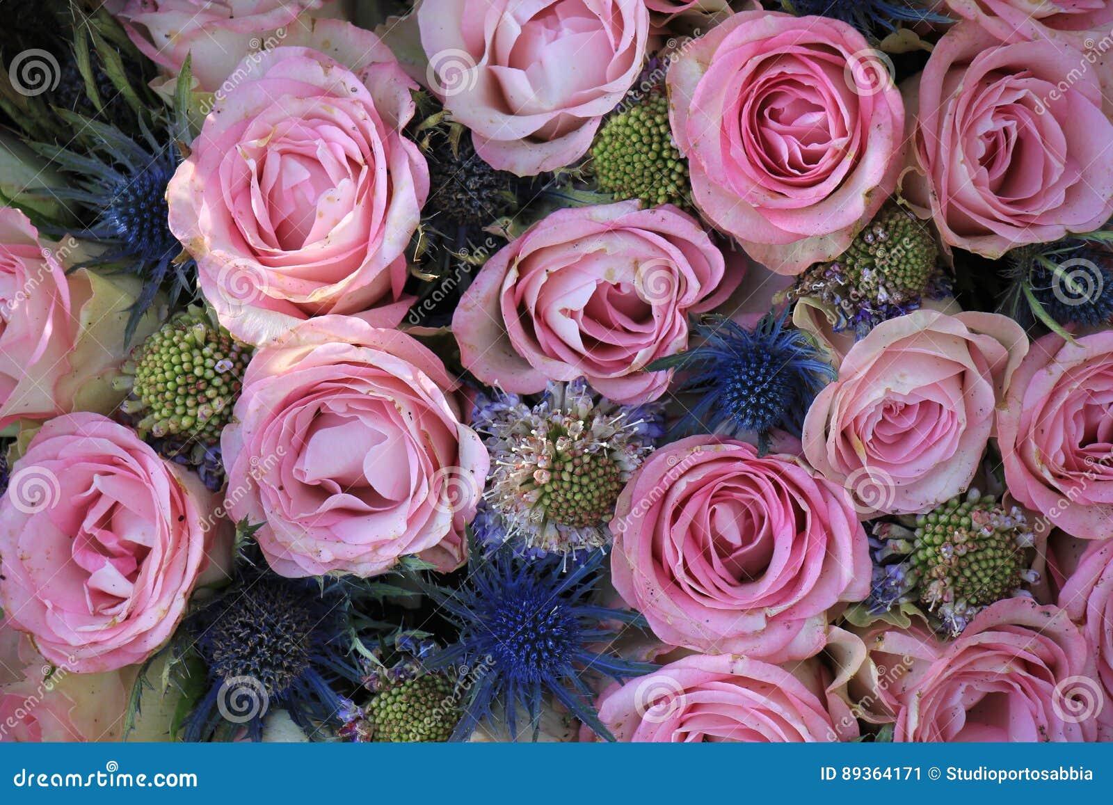 Rosa Und Blaue Hochzeitsblumen Stockbild Bild Von Floral Distel
