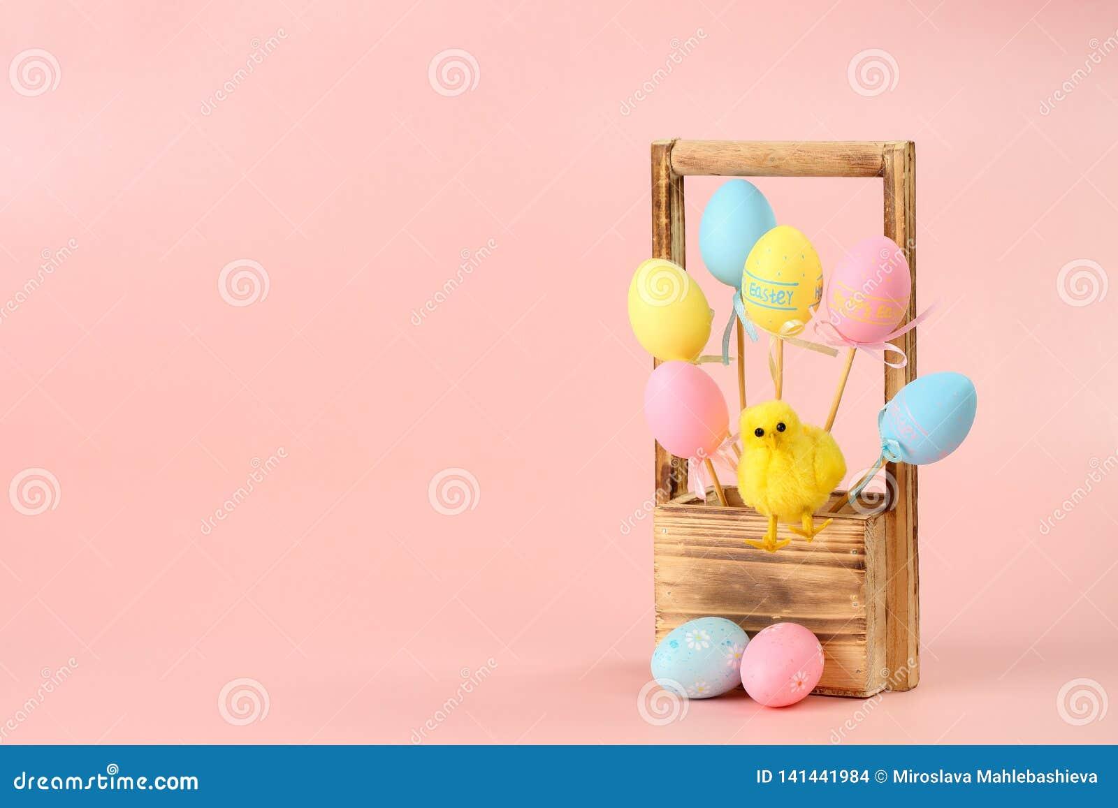 Rosa, uova dipinte gialle e blu sui bastoni e un pollo sveglio in un canestro di legno per i fiori su un fondo rosa pasqua