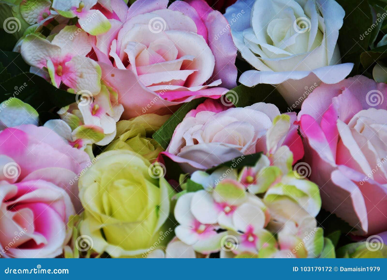 Rosa vita gula rosor och gräsplan lämnar upp blommor, slut