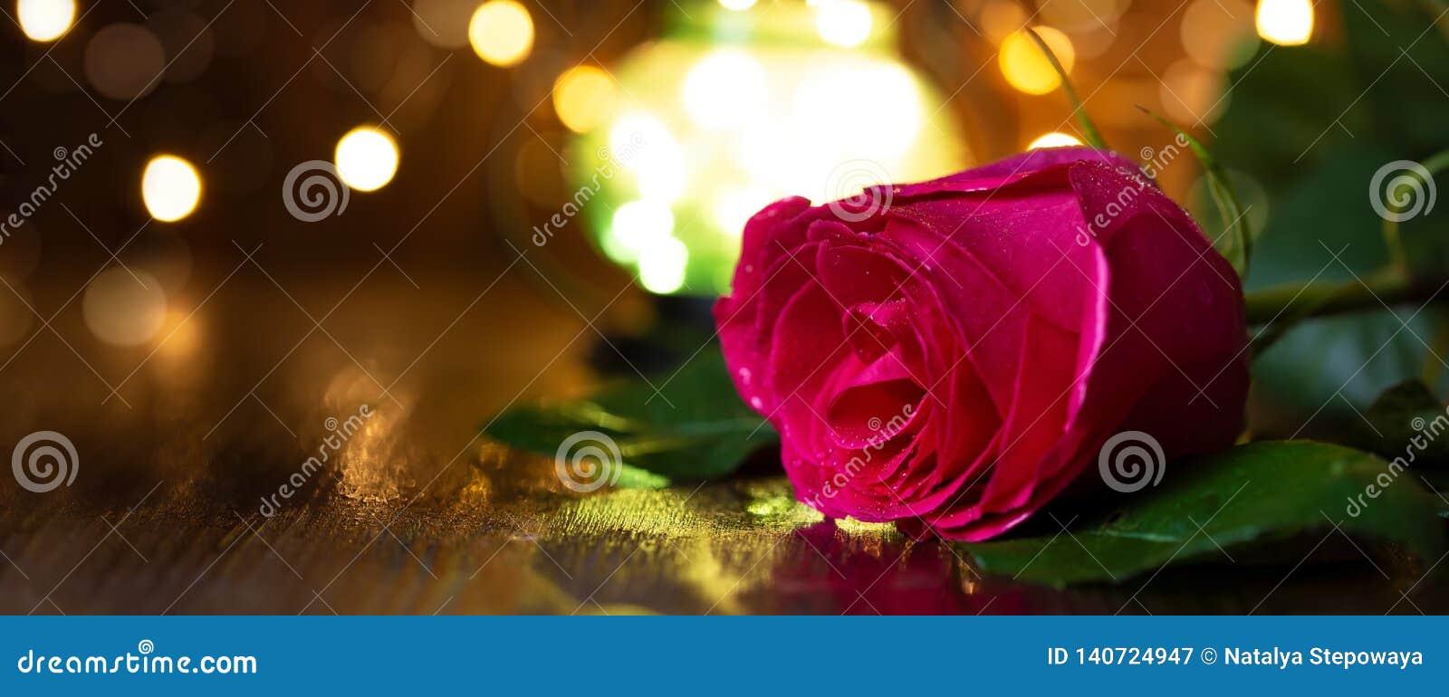 Rosa y linterna rojas con las luces en una tabla de madera
