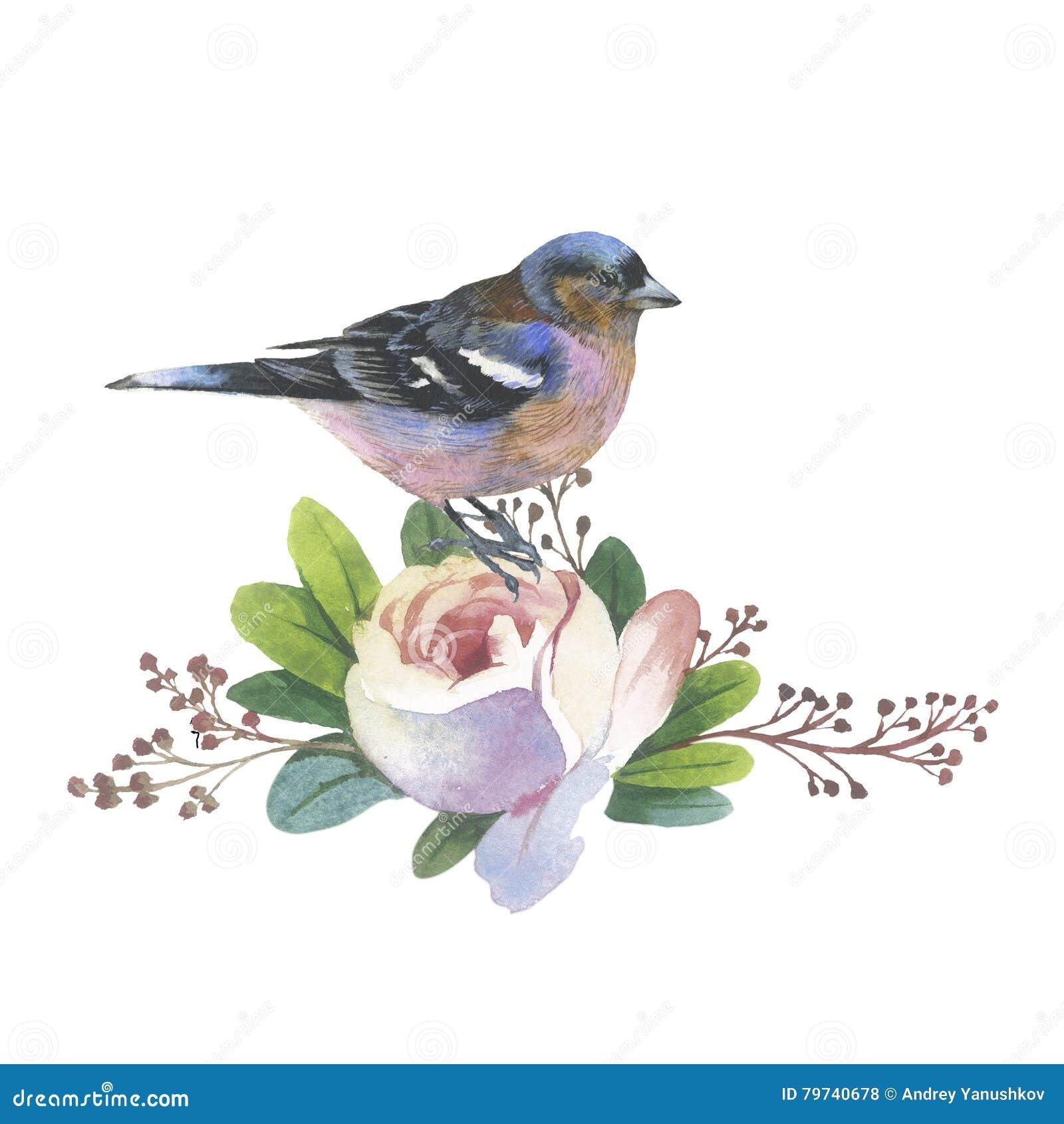 rosafarbene blume und vogel des wildflower in einer