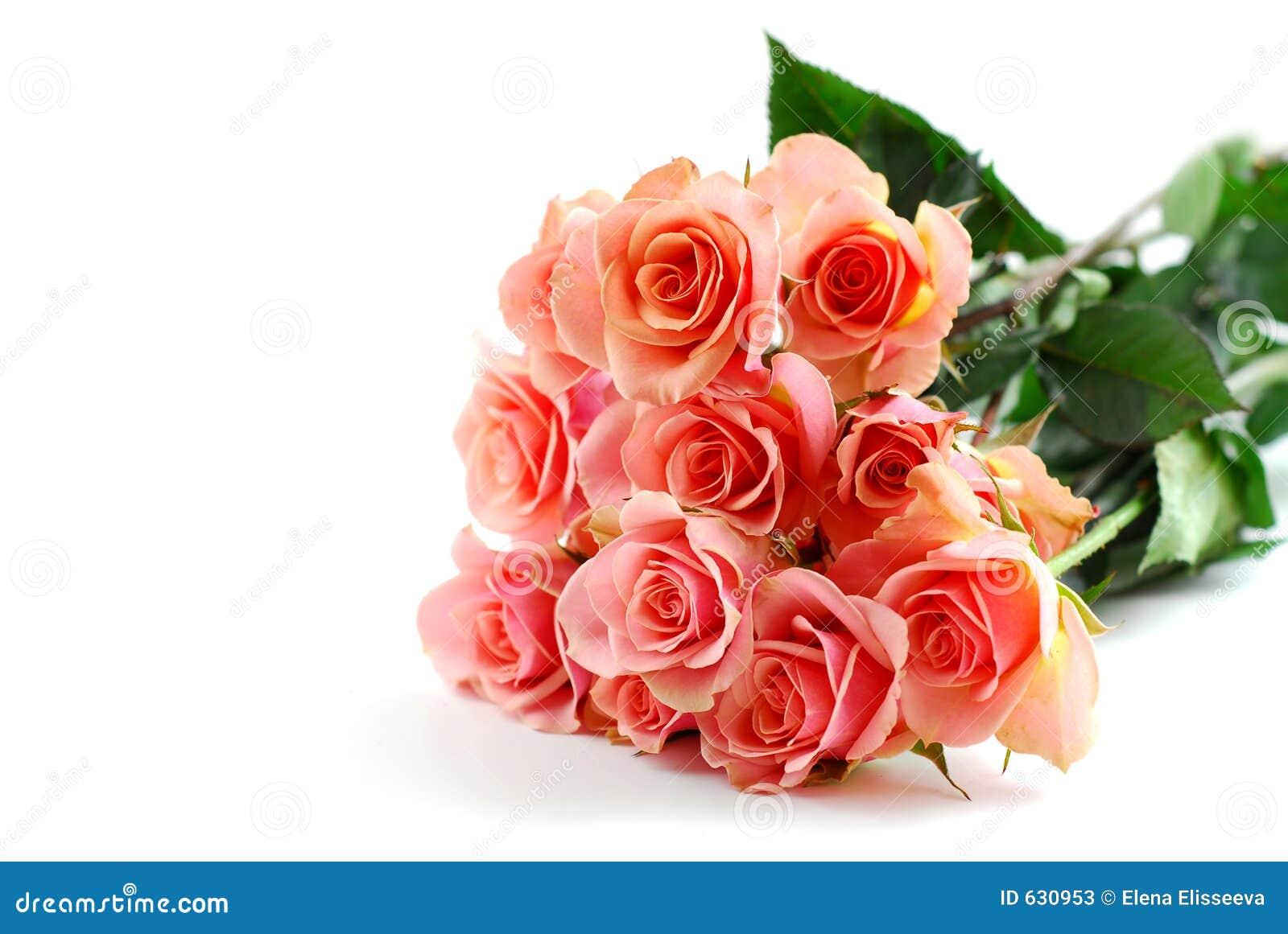 Rosafarbener Blumenstrauß des Rosas auf Weiß