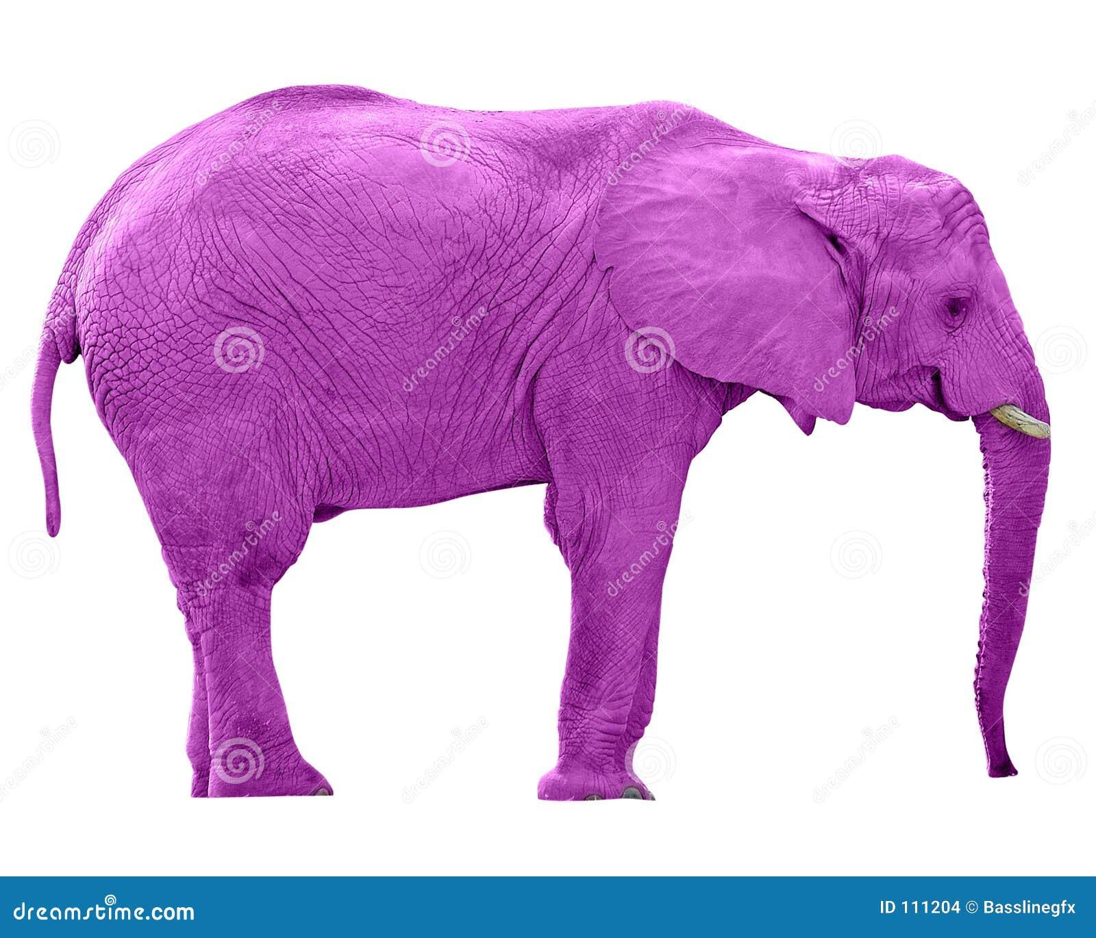 Rosafarbener Elefant w/Paths