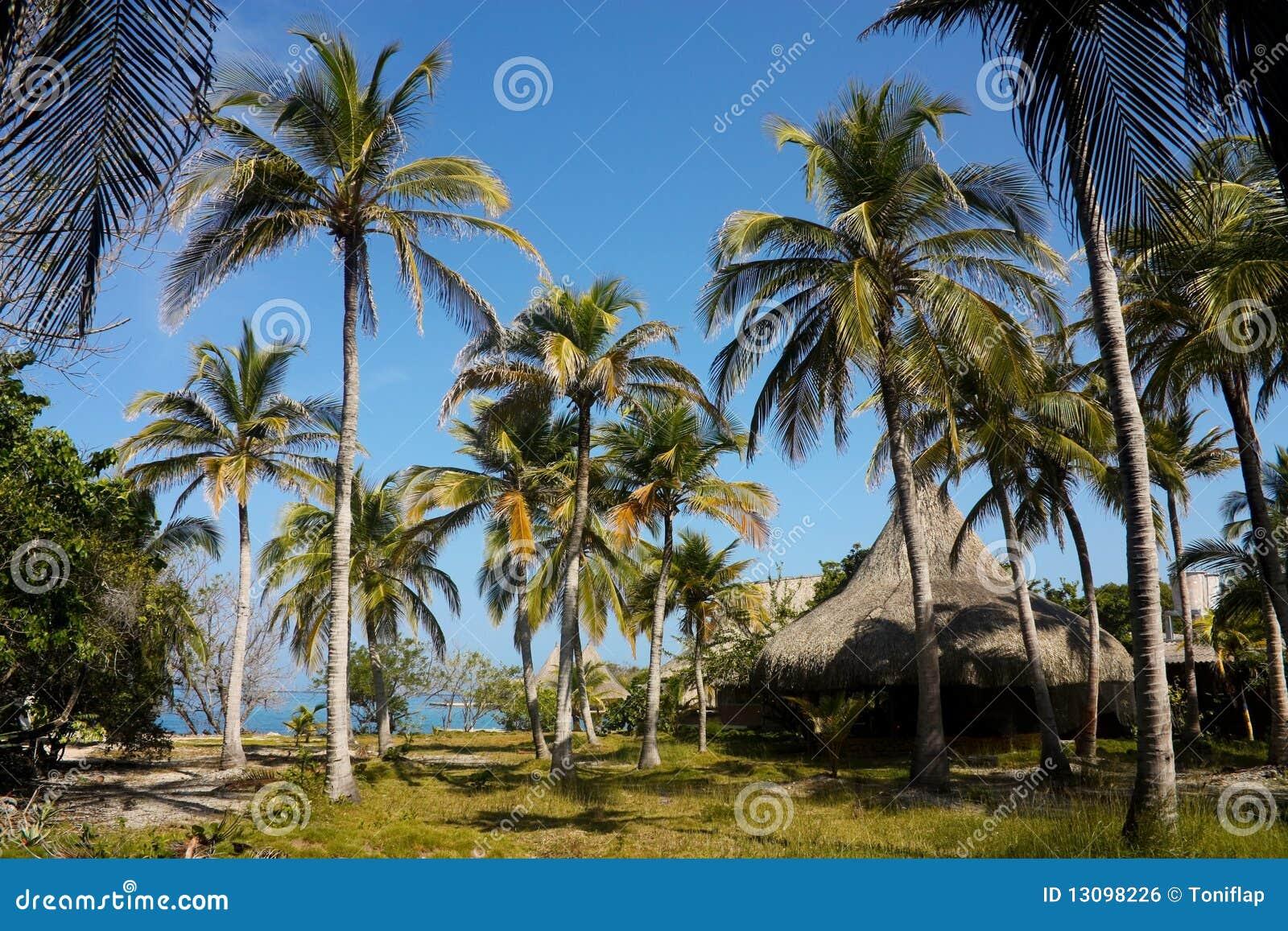 The Rosario Islands. Caribbean, Colombia