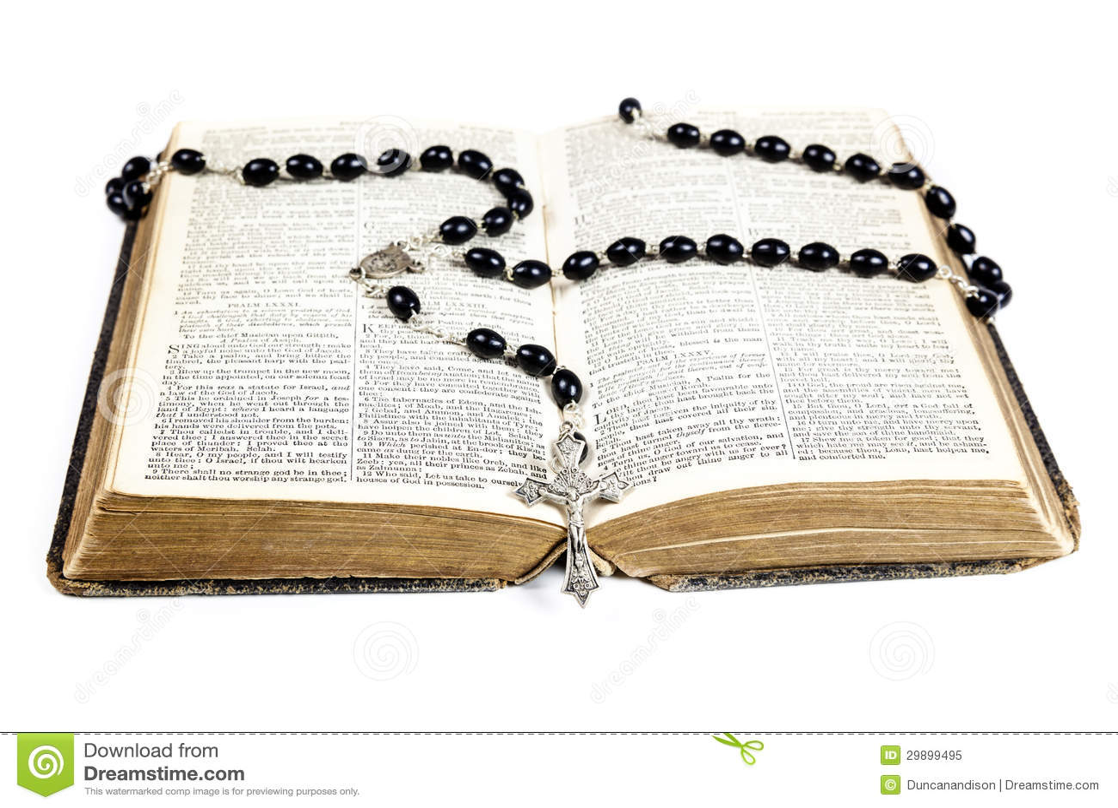 roman catholic bible download pdf