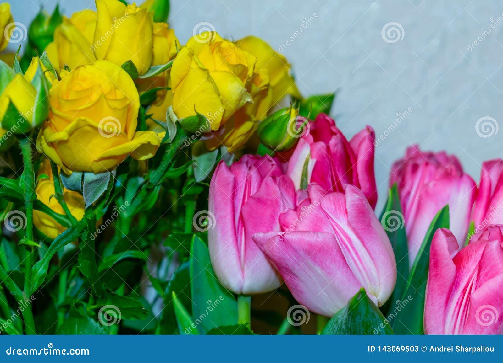 Rosas amarelas e tulipas vermelhas em um vaso