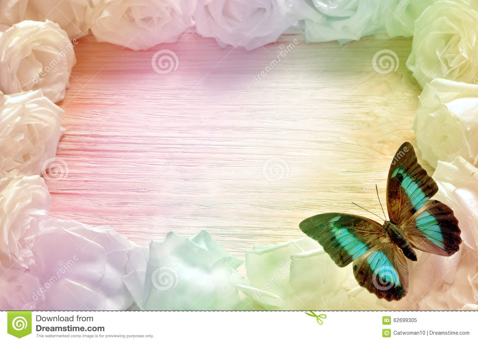 Rosas Blancas Que Enmarcan Un Fondo De Madera, Con Las Mariposas ...