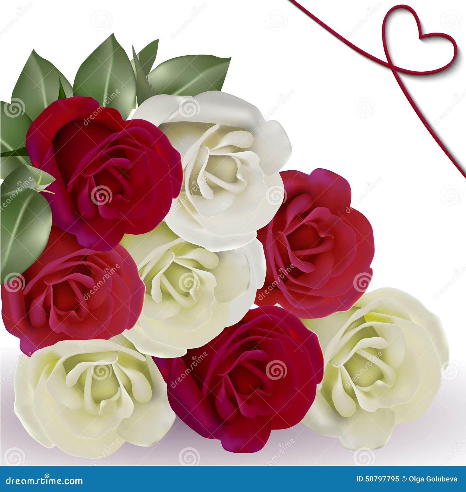 Flores Hermosas Rojas Y Anaranjadas Rosas Ilustración Del Vector