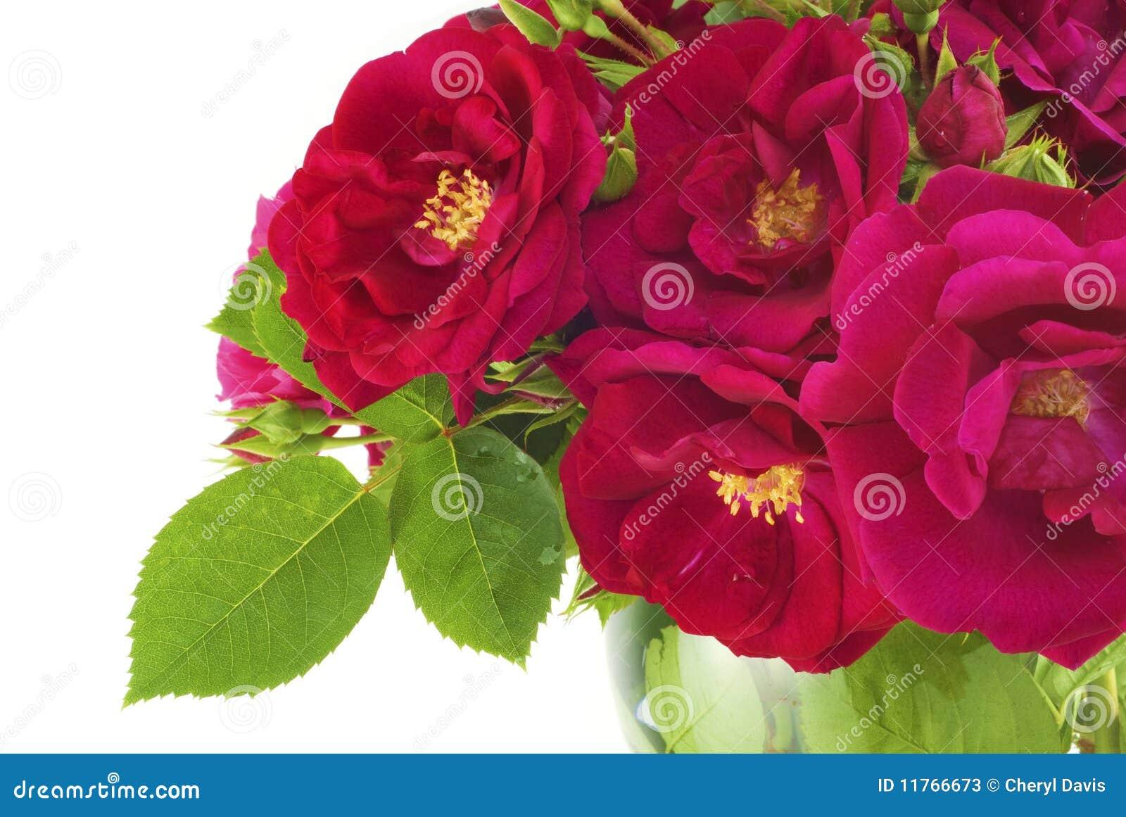 fotos jardim horizontal : fotos jardim horizontal:Um ramalhete bonito de rosas do jardim em um vaso, horizontal com