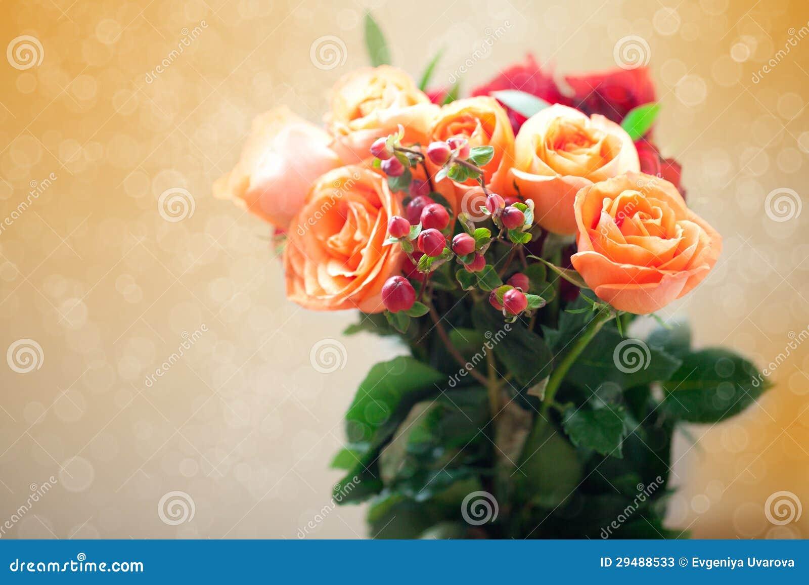 rosas coloridas con el bokeh fotos de archivo   imagen