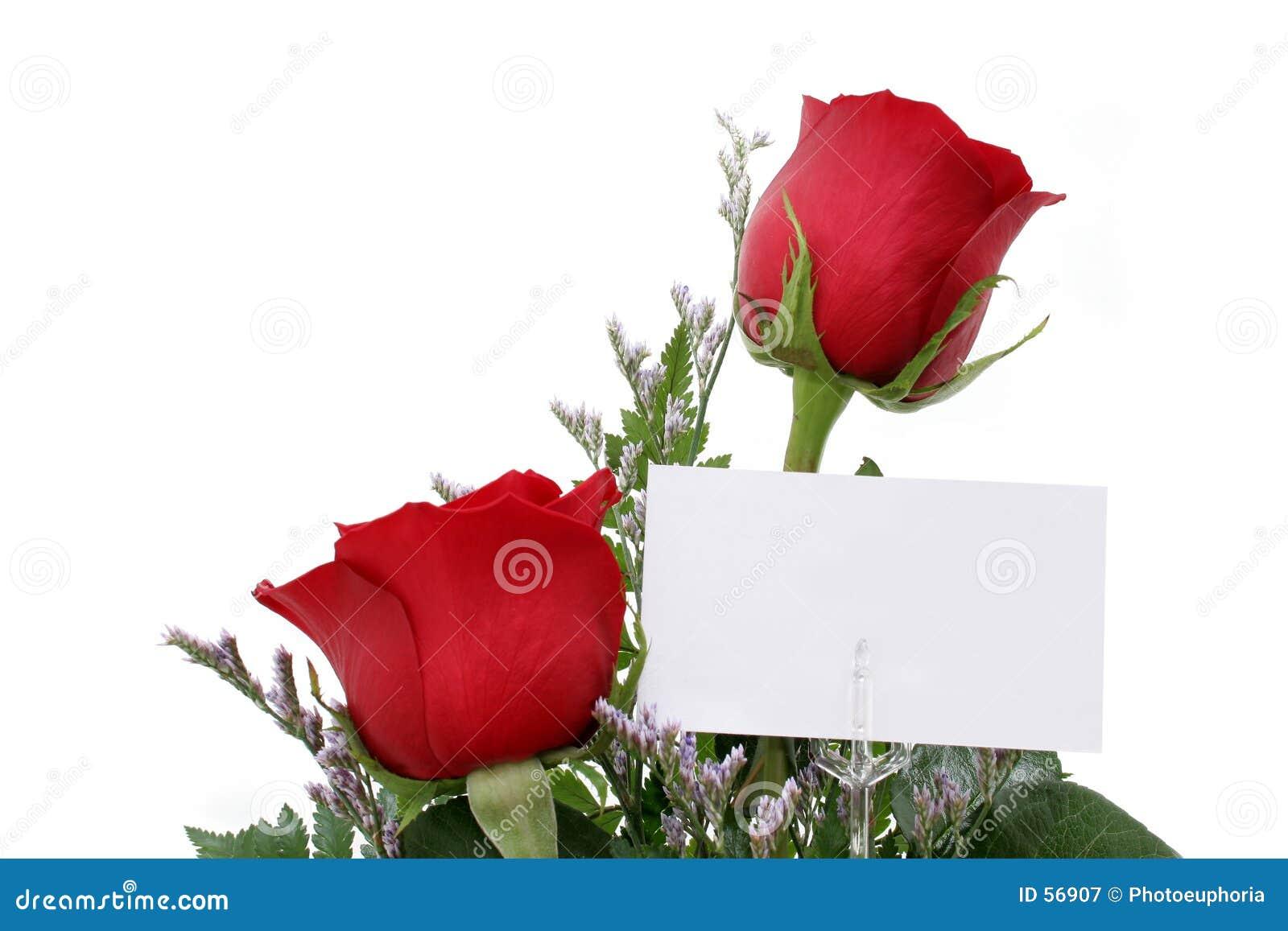 Rosas com cartão do presente (imagem 8.2mp)