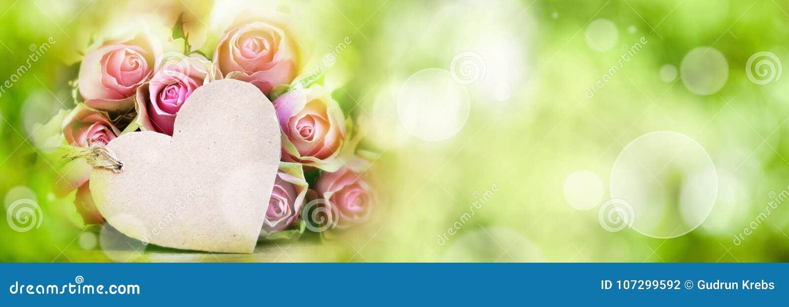 Rosas com o cartão no fundo da mola