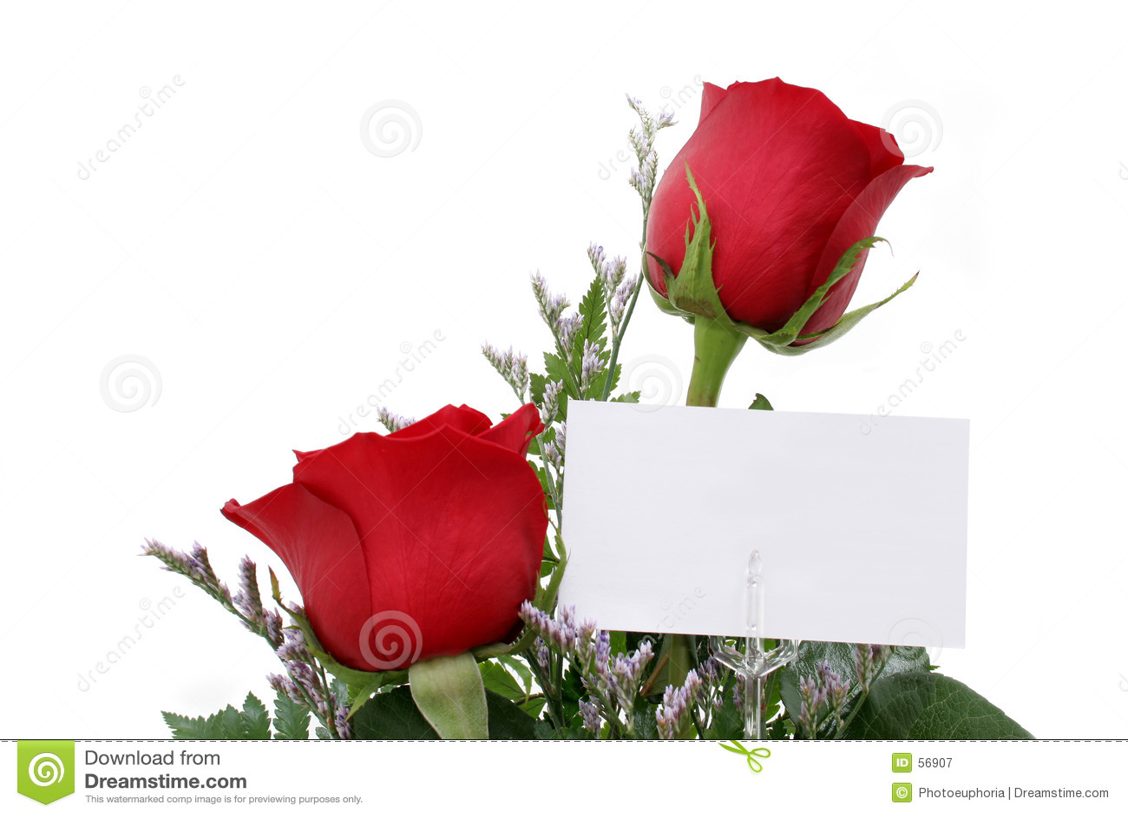 Rosas con la tarjeta del regalo (imagen 8.2mp)