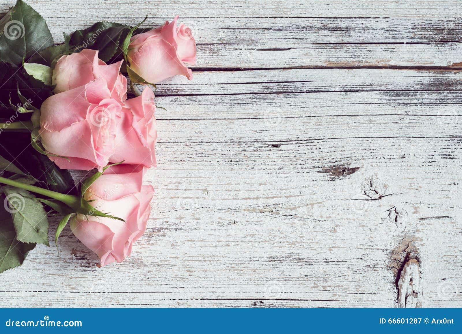 Rosas cor-de-rosa bonitas Fundo do vintage