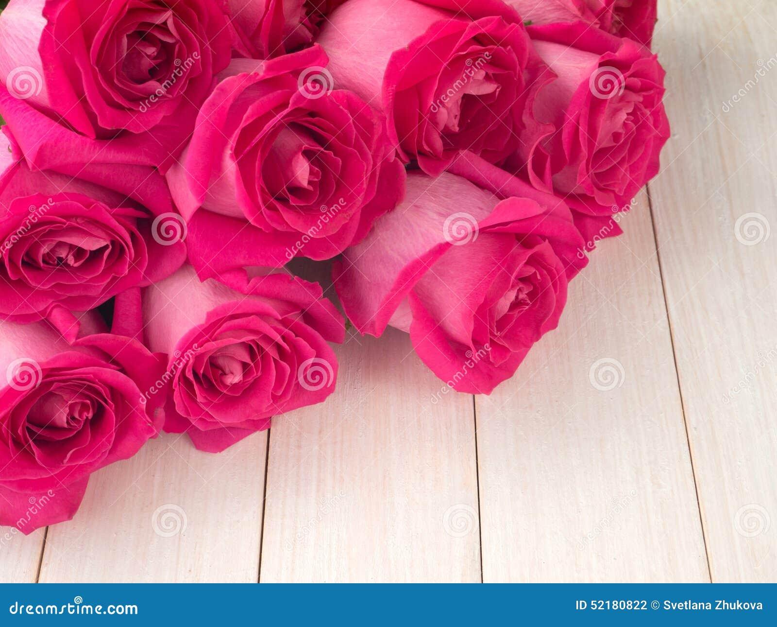 Rosas de chá híbridas cor-de-rosa