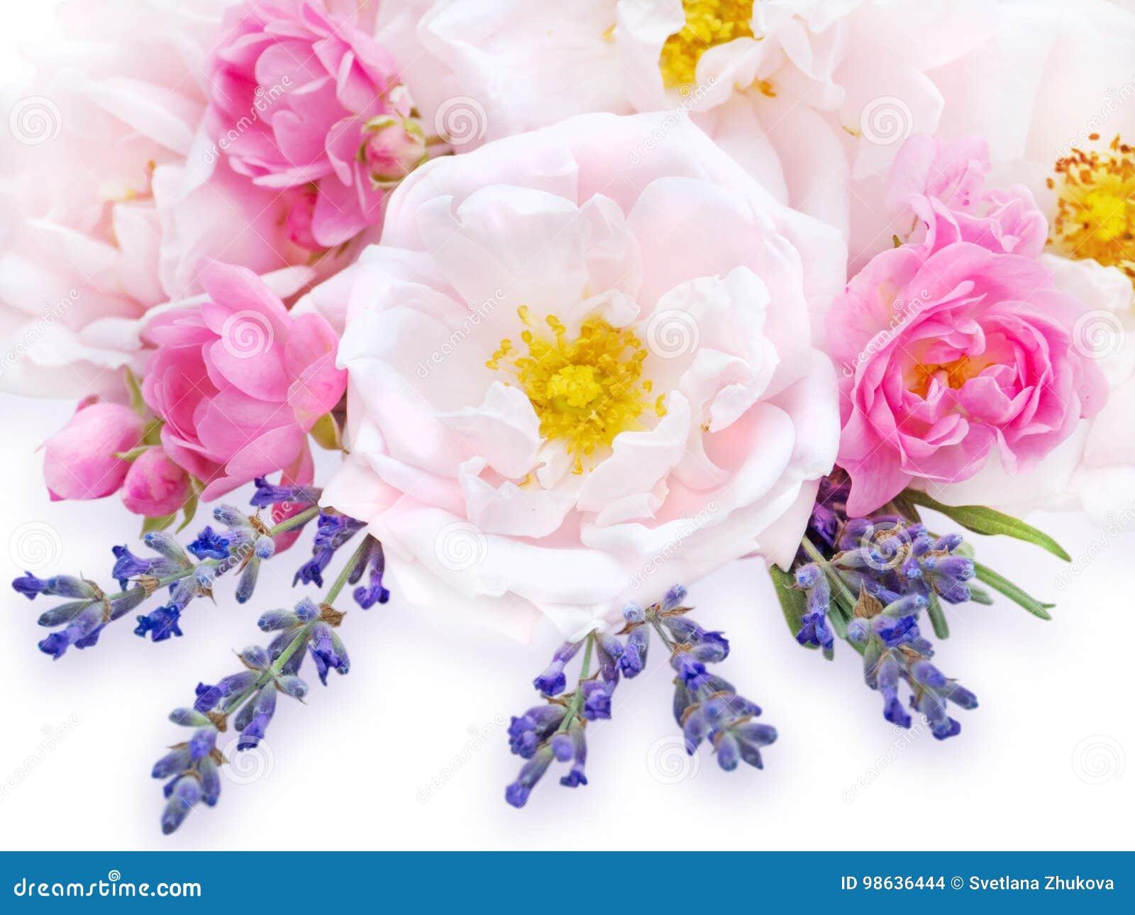 Rosas e ramalhete cor-de-rosa da alfazema