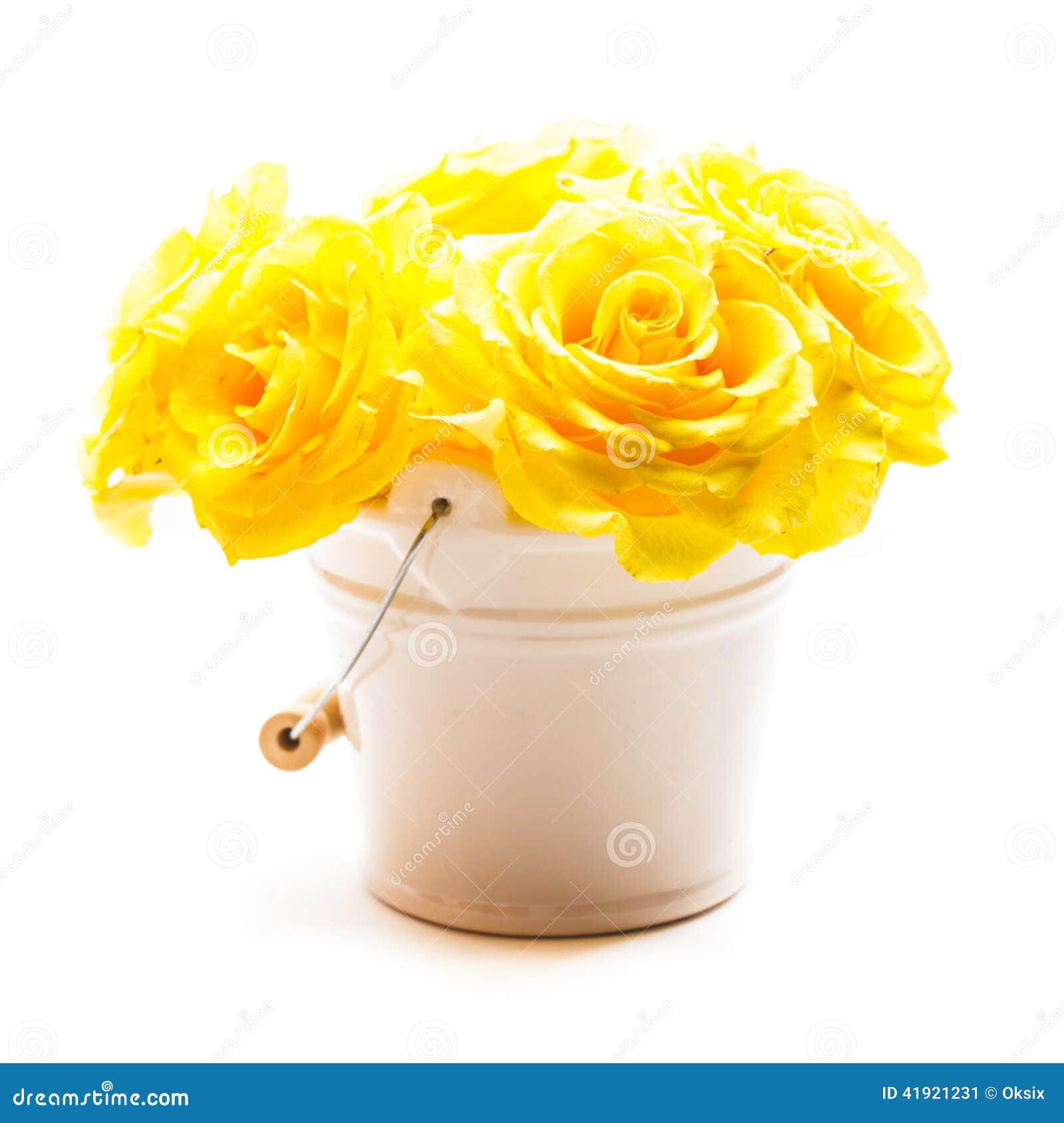 Rosas en el cubo